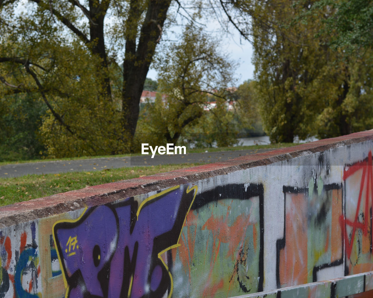 graffiti, tree, day, outdoors, multi colored, built structure, no people, architecture, retaining wall, nature, water