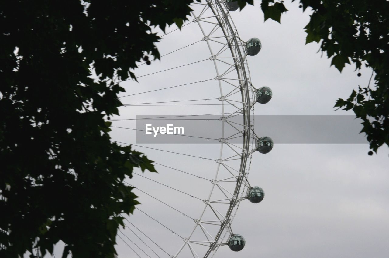 sky, tree, low angle view, plant, amusement park ride, amusement park, arts culture and entertainment, nature, no people, day, ferris wheel, outdoors, growth, branch, cloud - sky, tall - high, large, dusk, silhouette, leisure activity, fairground
