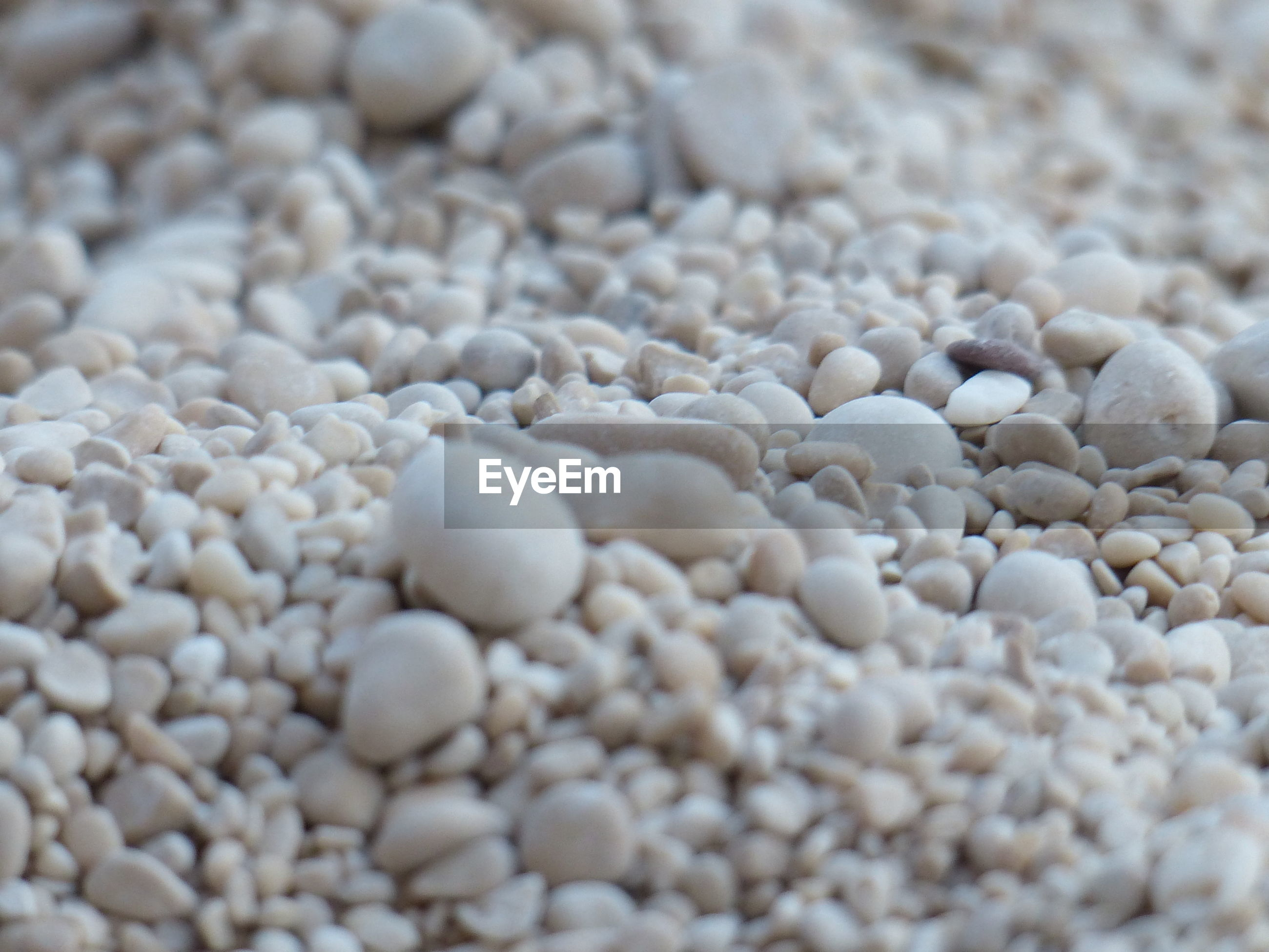 Close-up of white pebbles