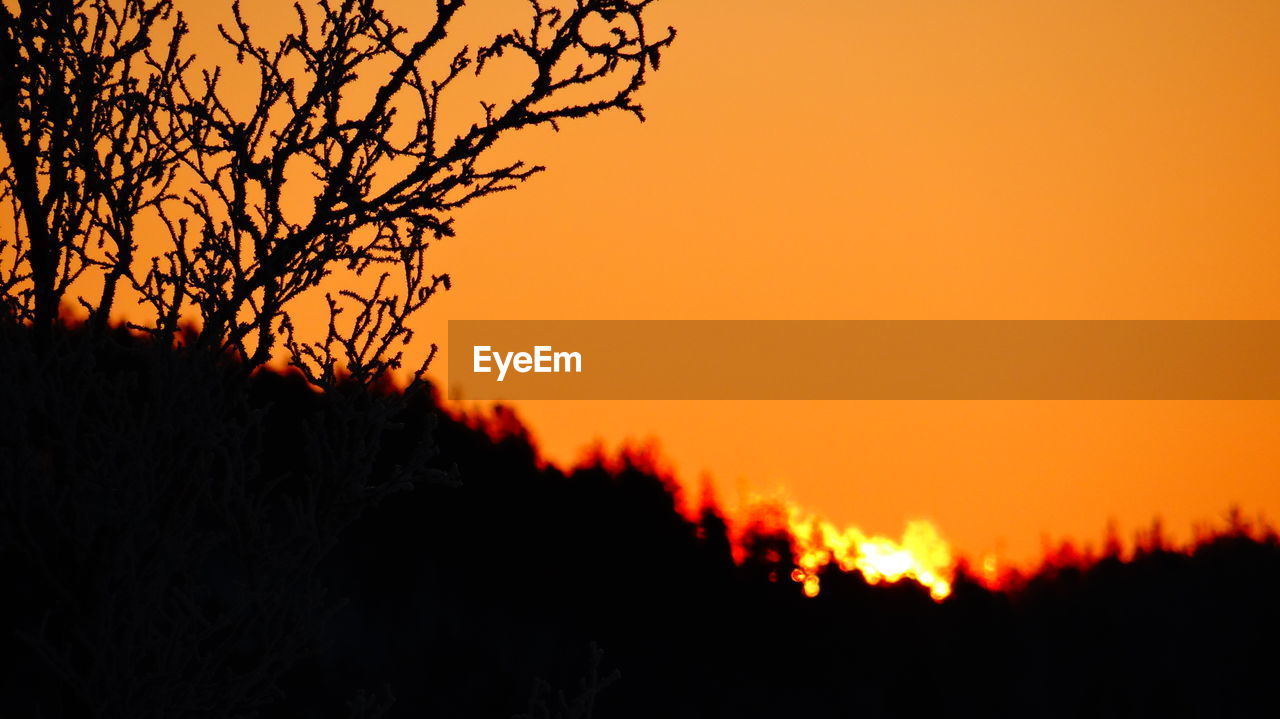 sunset, orange color, silhouette, nature, scenics, beauty in nature, tranquil scene, tree, tranquility, outdoors, no people, landscape, sky, growth, clear sky, night