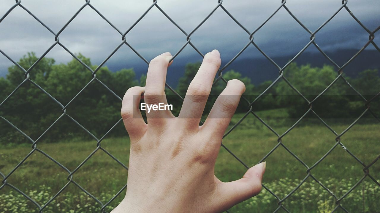 Cropped Image Of Woman Holding Chainlink Fence Against Landscape