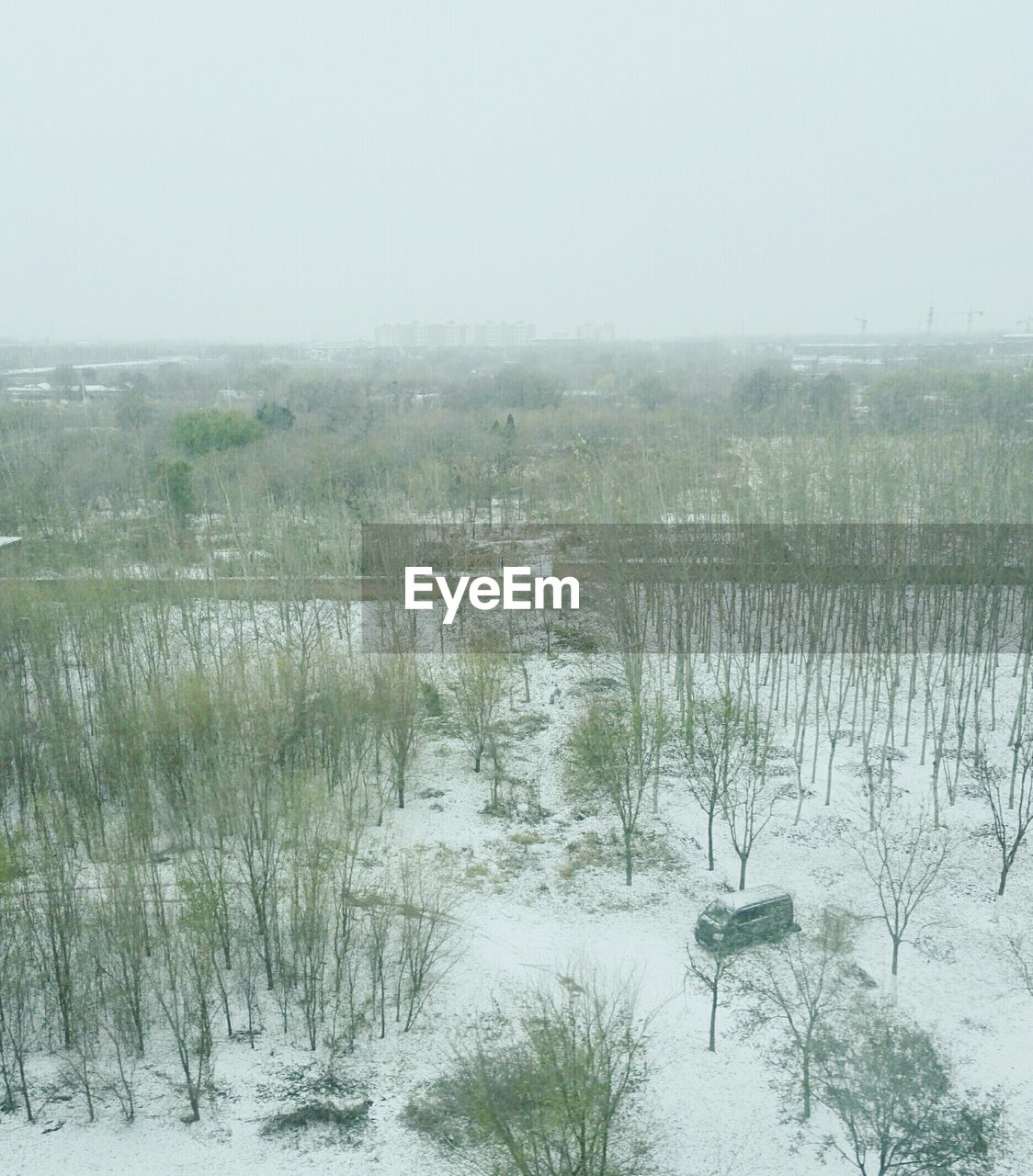 cold temperature, winter, weather, nature, snow, fog, no people, outdoors, tranquility, tranquil scene, landscape, water, lake, day, scenics, beauty in nature, tree, sky