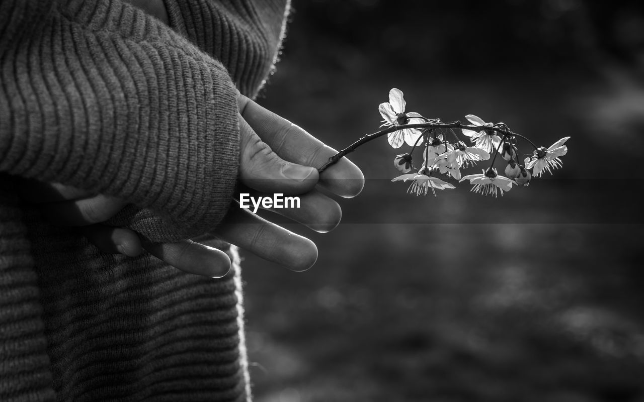 human hand, hand, real people, holding, focus on foreground, human body part, one person, lifestyles, close-up, nature, fragility, women, vulnerability, flowering plant, leisure activity, plant, flower, finger, human finger, body part, outdoors, flower head, warm clothing