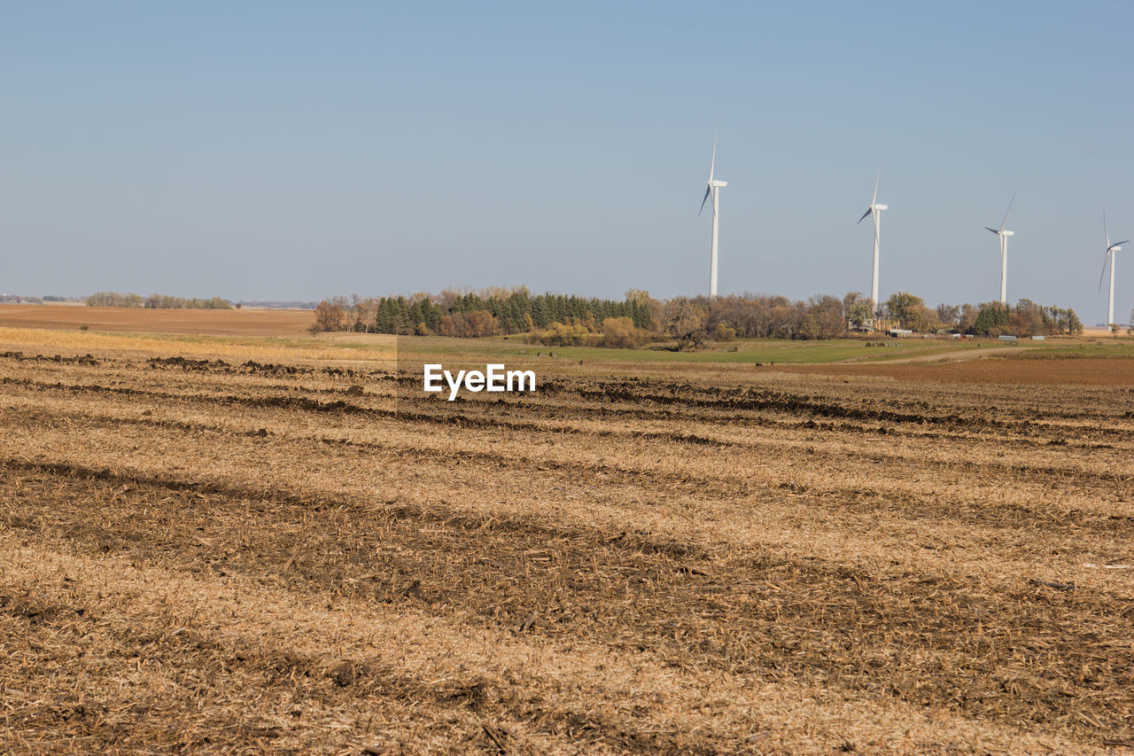 environment, landscape, sky, fuel and power generation, field, land, renewable energy, wind turbine, alternative energy, turbine, environmental conservation, rural scene, wind power, nature, day, clear sky, no people, agriculture, beauty in nature, scenics - nature, outdoors, sustainable resources