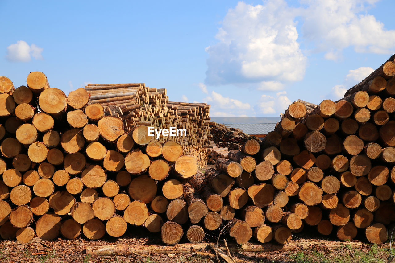 Stack of logs against sky
