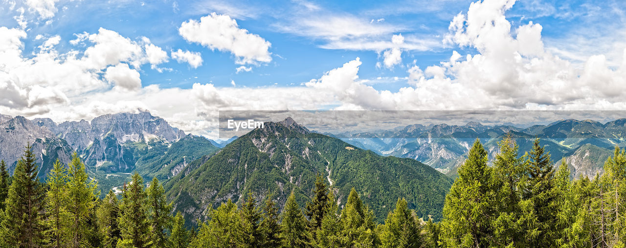 mountain, nature, sky, beauty in nature, tree, scenics, cloud - sky, forest, no people, day, outdoors, range