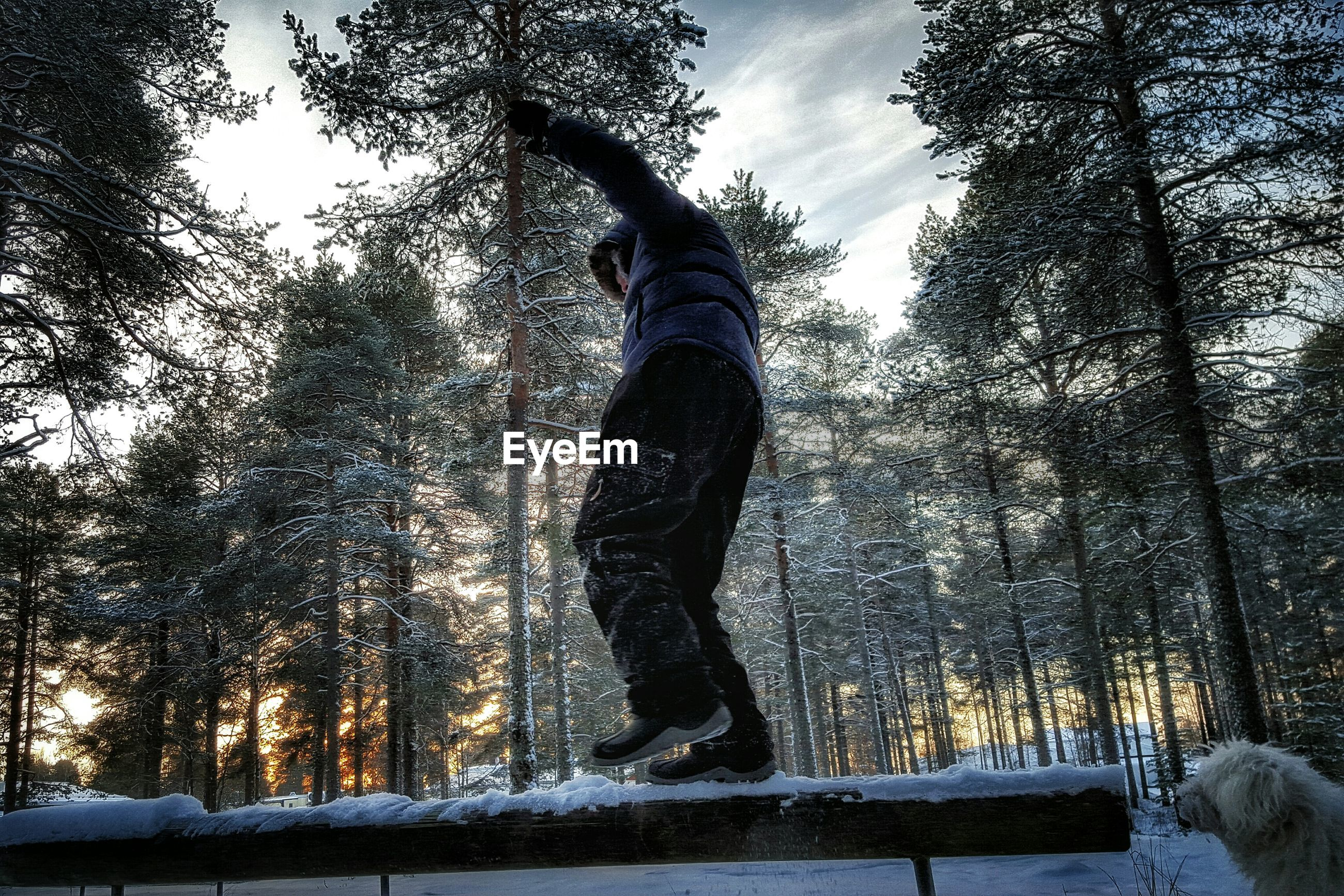 Low angle view of man standing on snow covered railing against tree during winter