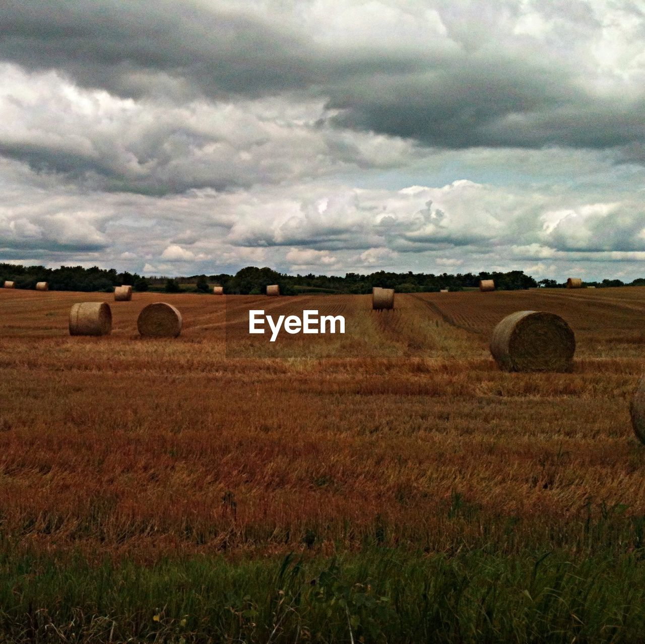 bale, field, agriculture, landscape, harvesting, hay, sky, farm, grass, hay bale, rural scene, tranquility, cloud - sky, nature, no people, day, outdoors, beauty in nature