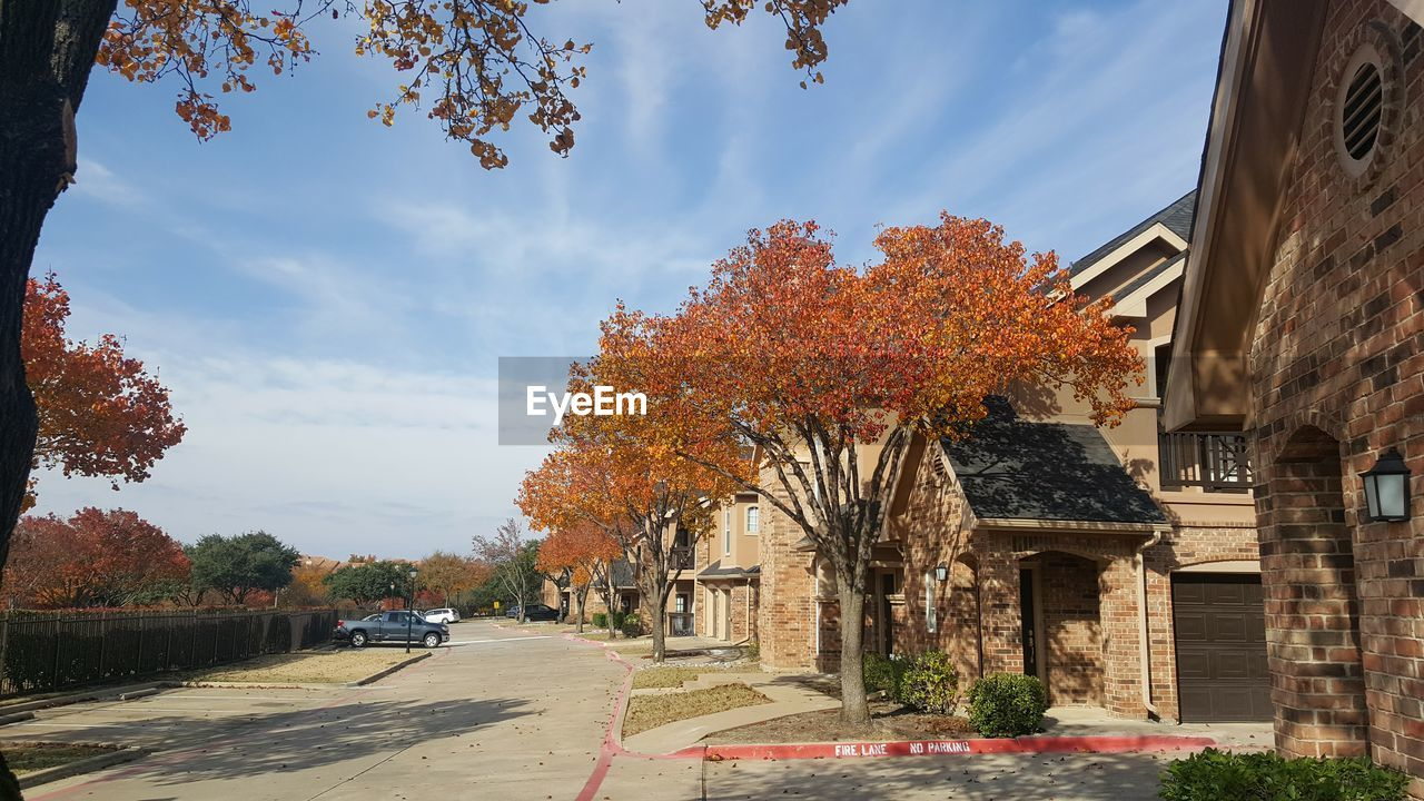 tree, architecture, building exterior, plant, autumn, built structure, nature, sky, change, cloud - sky, building, day, transportation, orange color, no people, road, the way forward, outdoors, growth, city, fall