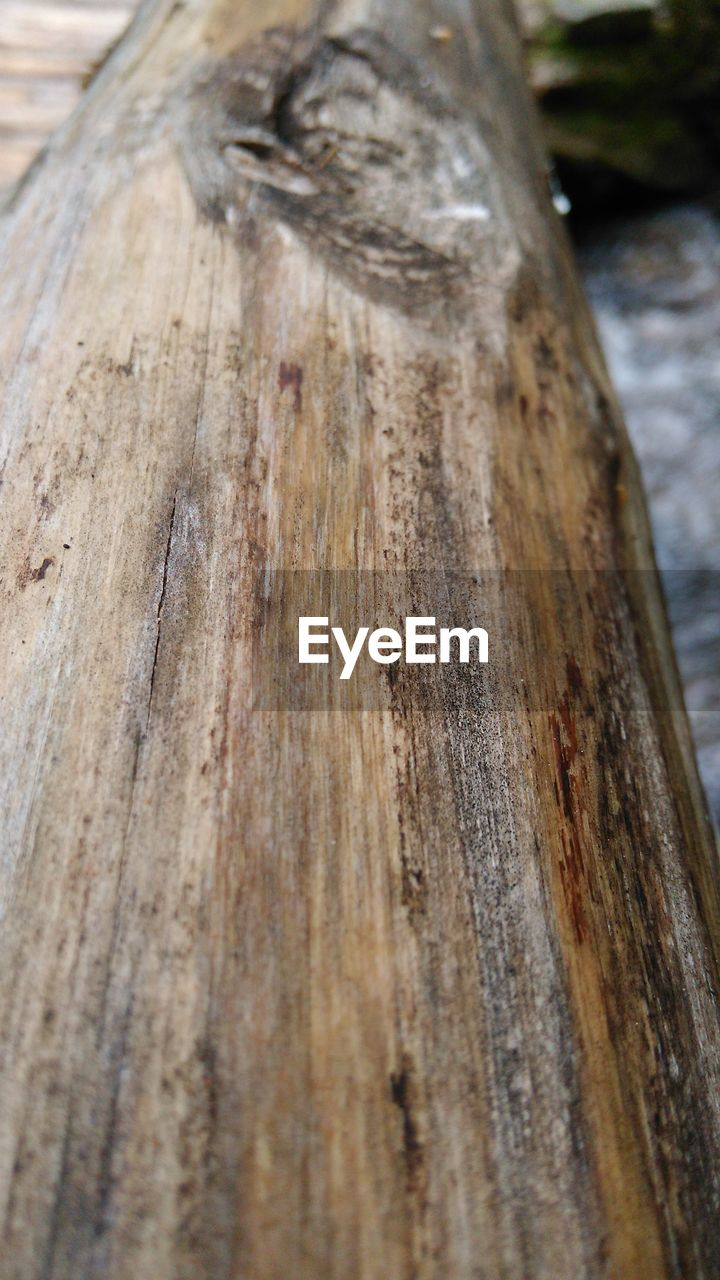 wood - material, close-up, day, no people, textured, outdoors, tree trunk, wood grain, tree, nature