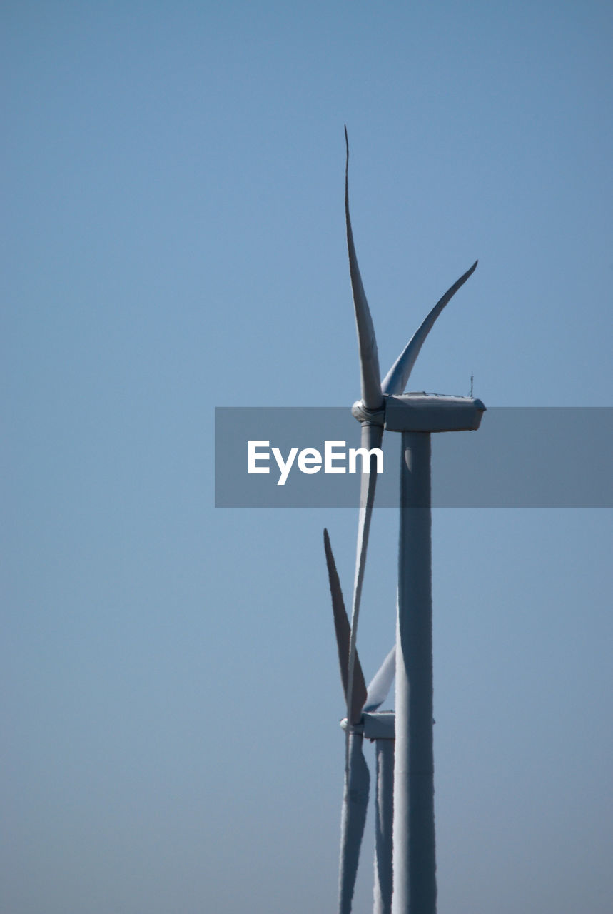 sky, wind turbine, turbine, nature, alternative energy, wind power, renewable energy, copy space, clear sky, no people, low angle view, environmental conservation, day, fuel and power generation, environment, blue, one animal, outdoors, sunlight, animal