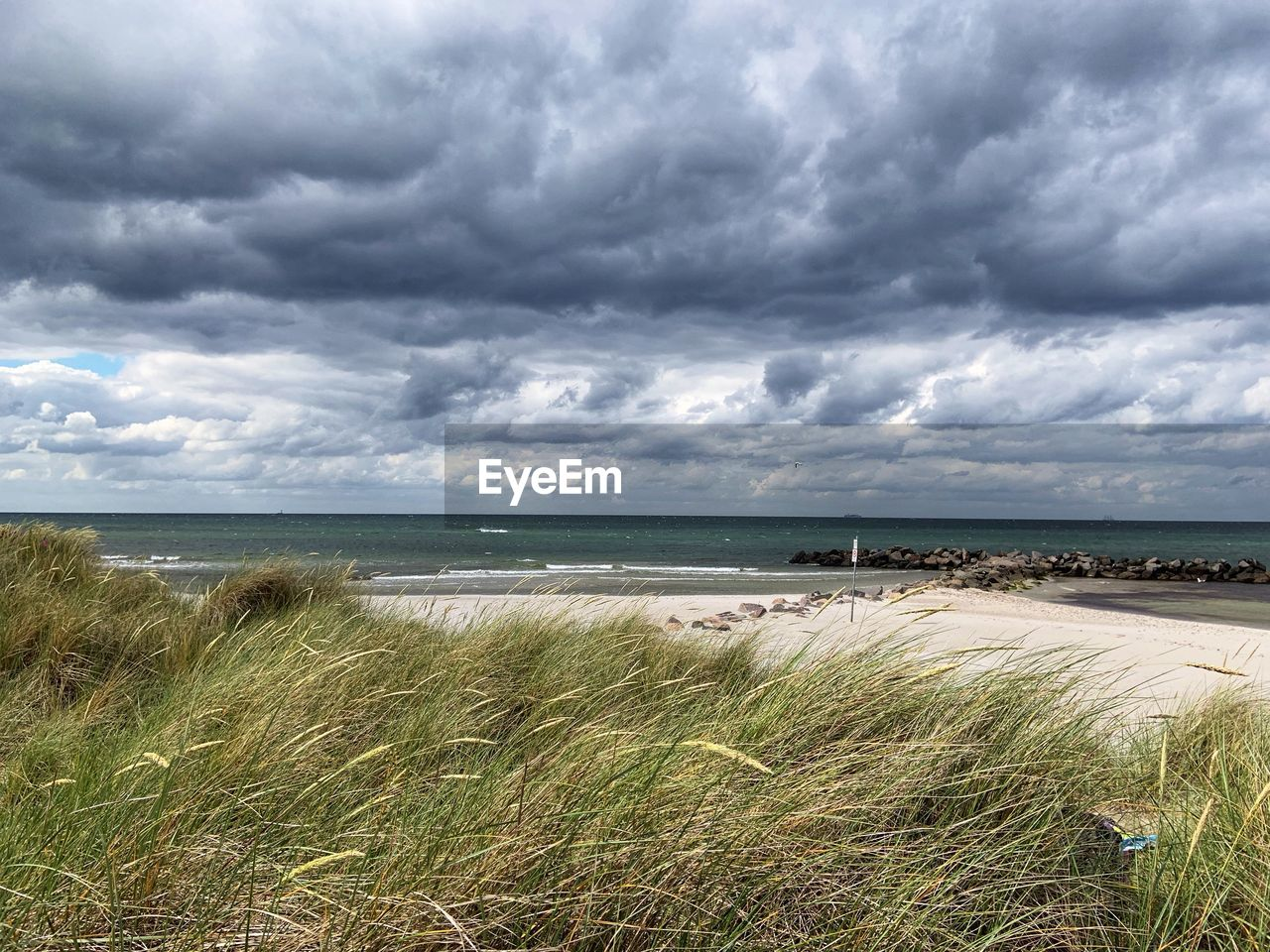 cloud - sky, sky, water, sea, plant, beauty in nature, land, grass, scenics - nature, beach, horizon over water, horizon, nature, tranquility, tranquil scene, day, growth, marram grass, no people, timothy grass