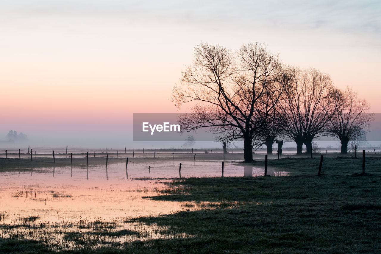 BARE TREE BY LANDSCAPE AGAINST SKY DURING SUNSET