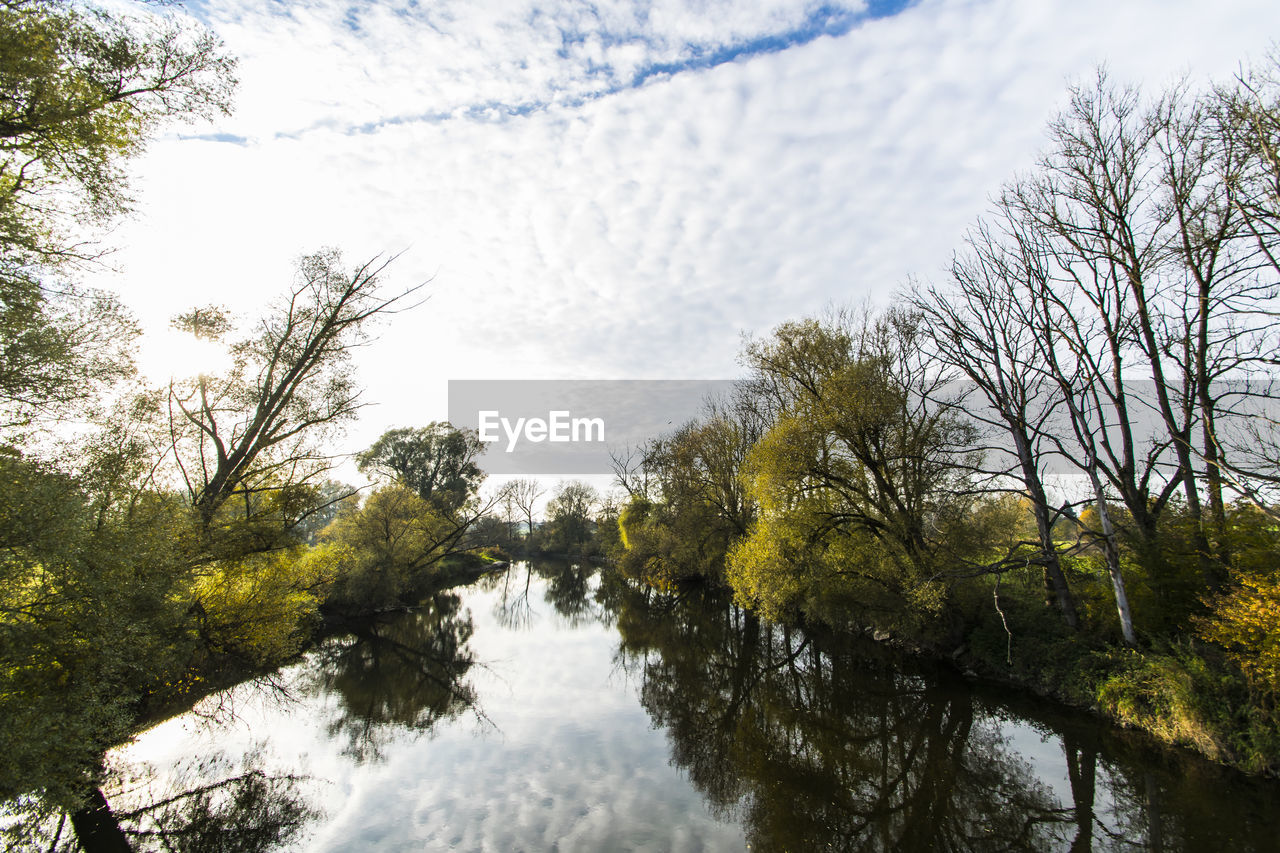 tree, plant, water, beauty in nature, tranquility, nature, sky, tranquil scene, no people, scenics - nature, river, day, reflection, growth, non-urban scene, forest, outdoors, land, flowing water, flowing
