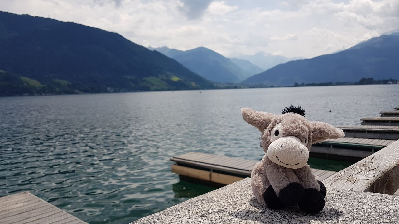mountain, water, lake, tranquility, sky, beauty in nature, nature, scenics - nature, tranquil scene, representation, mountain range, day, no people, cloud - sky, stuffed toy, animal representation, non-urban scene, wood - material, outdoors