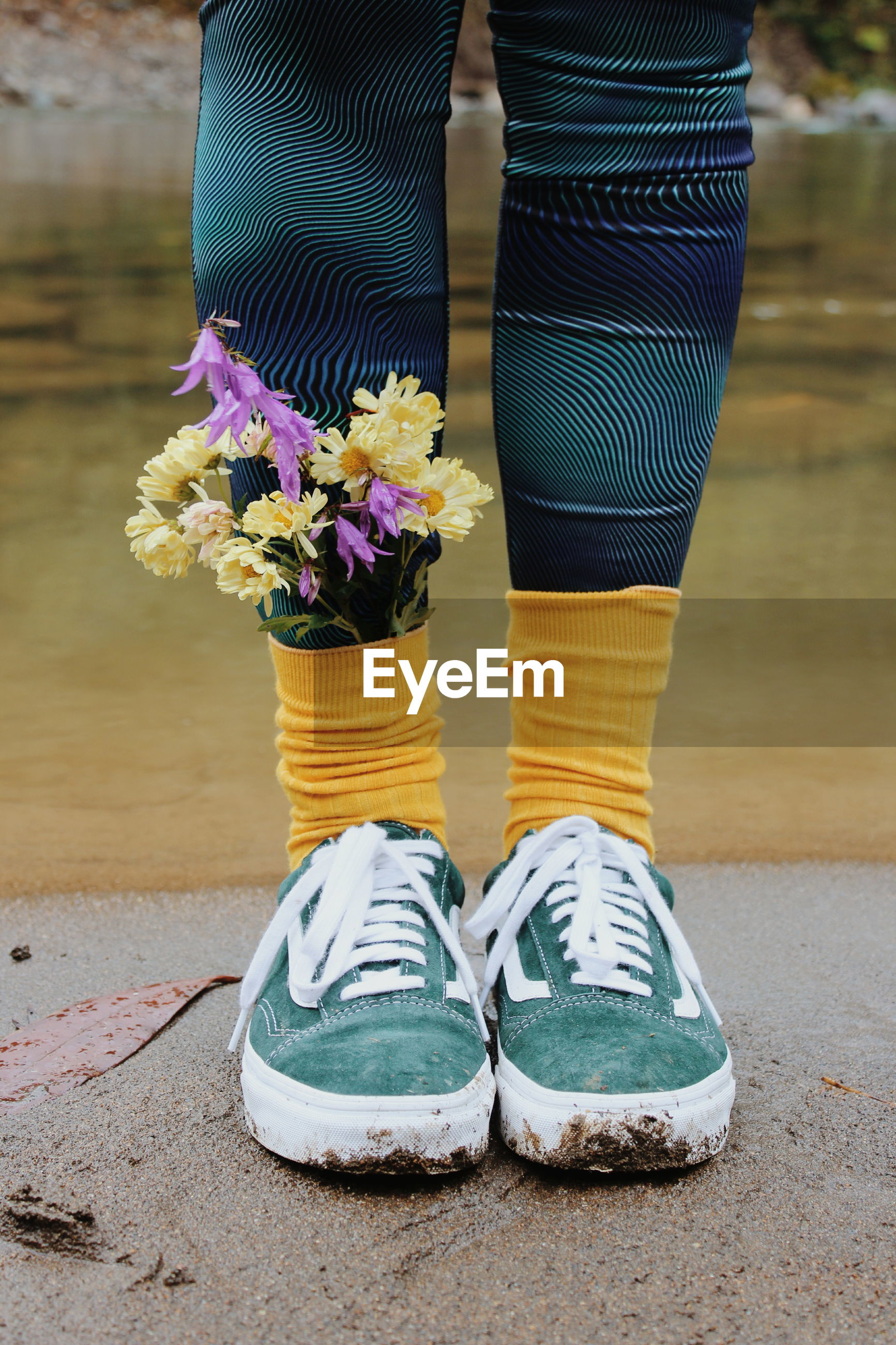 LOW SECTION OF WOMAN WEARING SHOES STANDING BY FLOWER
