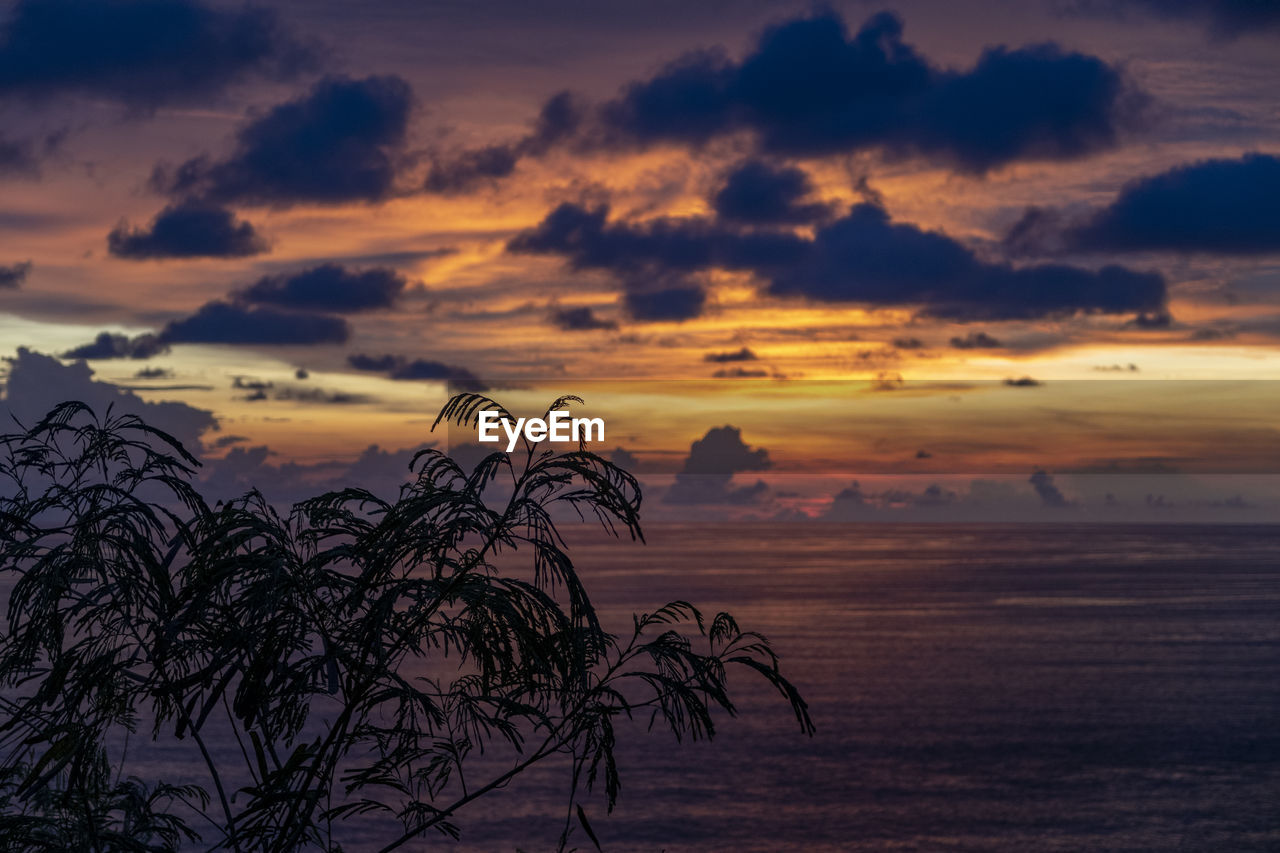 sunset, sky, scenics - nature, beauty in nature, tranquil scene, cloud - sky, tranquility, orange color, water, sea, nature, idyllic, silhouette, no people, plant, non-urban scene, tree, land, outdoors, romantic sky