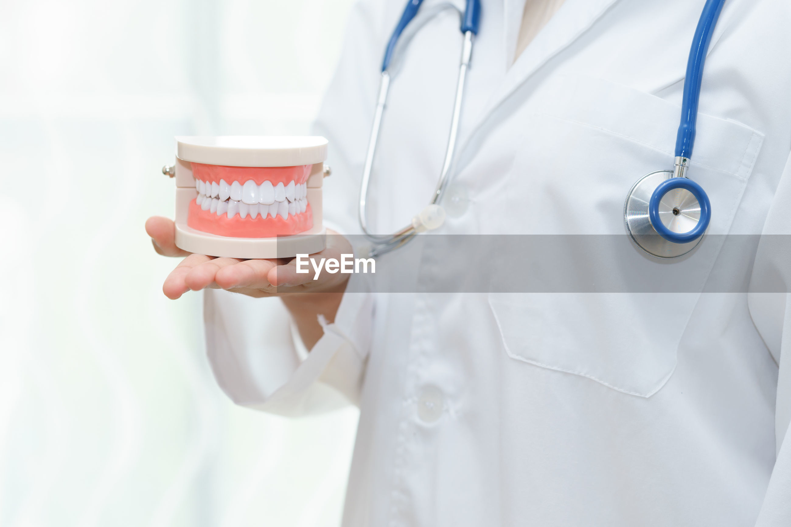 Midsection of doctor holding dentures