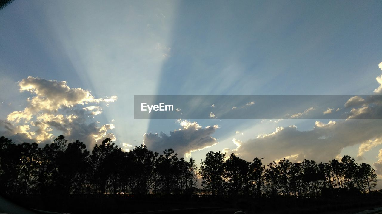 tree, cloud - sky, sky, nature, sunbeam, beauty in nature, no people, tranquility, sunlight, growth, sunset, scenics, outdoors, day