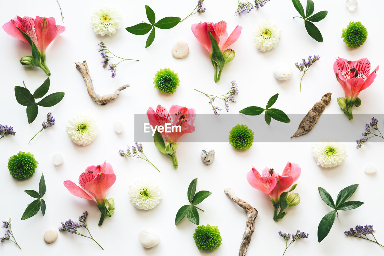 freshness, flower, flowering plant, plant, beauty in nature, indoors, no people, high angle view, fragility, close-up, nature, vulnerability, pink color, directly above, still life, large group of objects, green color, petal, food and drink, arrangement, flower head