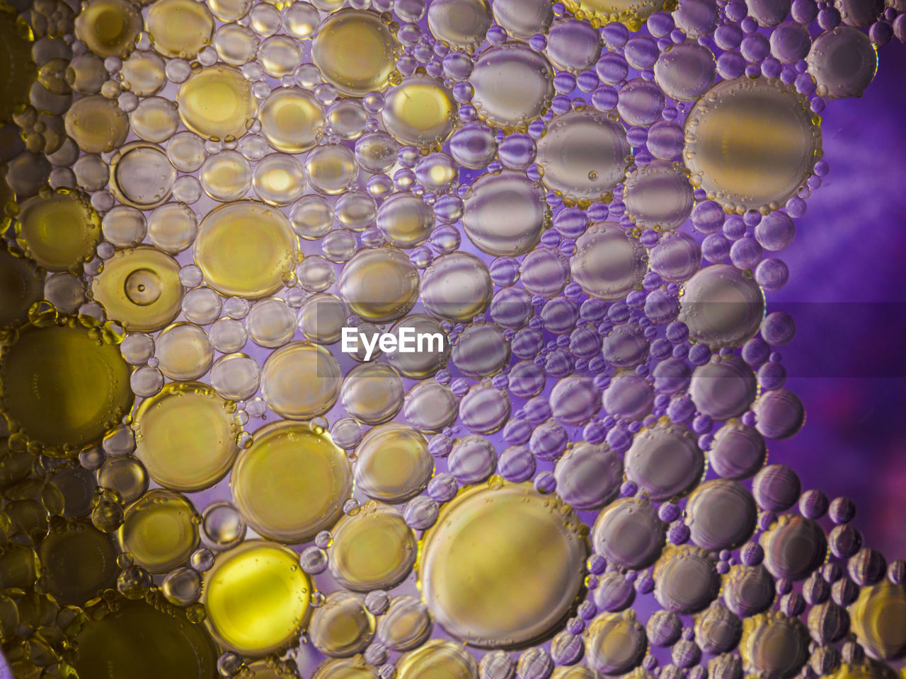 Colorful macro shot of olive oil bubbles in a colored glass of water