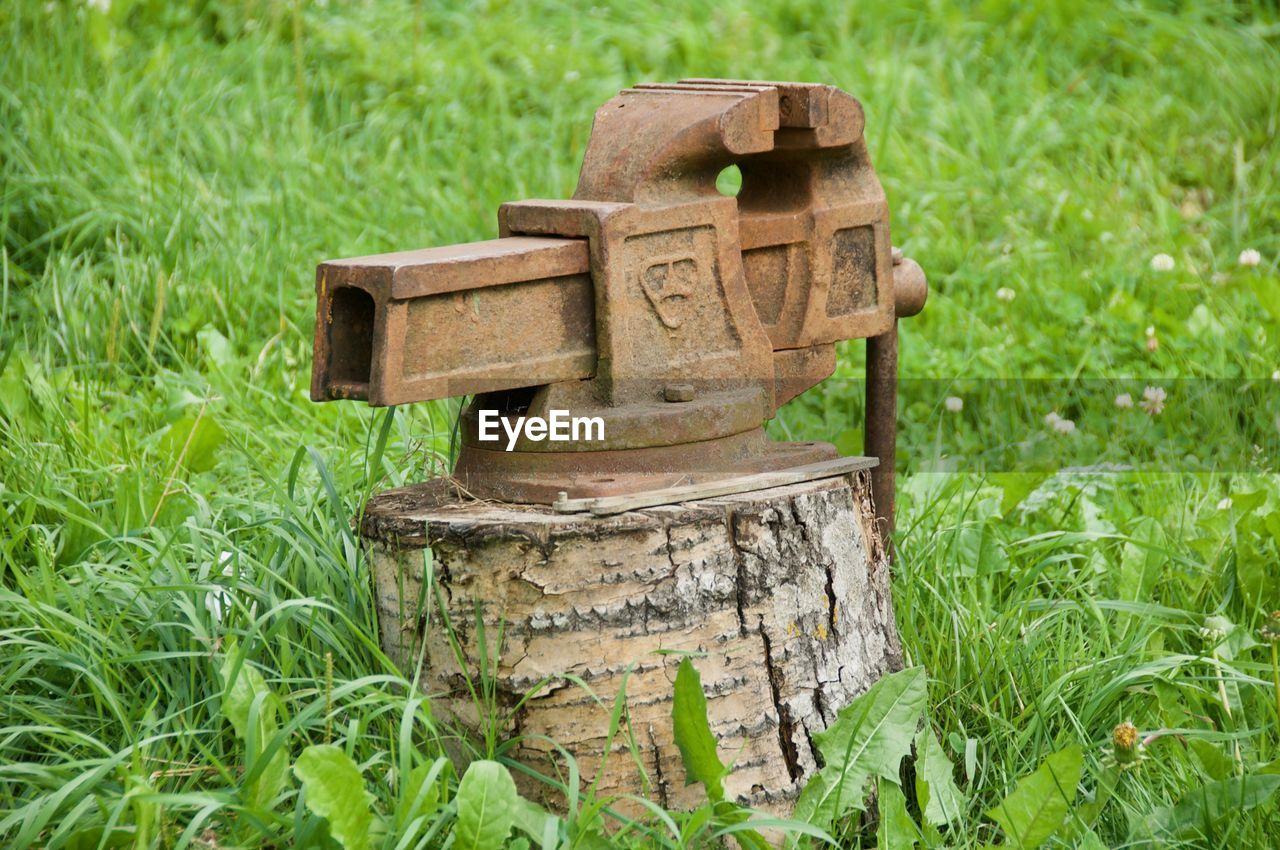 grass, plant, nature, field, land, green color, no people, day, metal, outdoors, focus on foreground, rusty, wood - material, growth, close-up, tree, selective focus, plain, toy, creativity