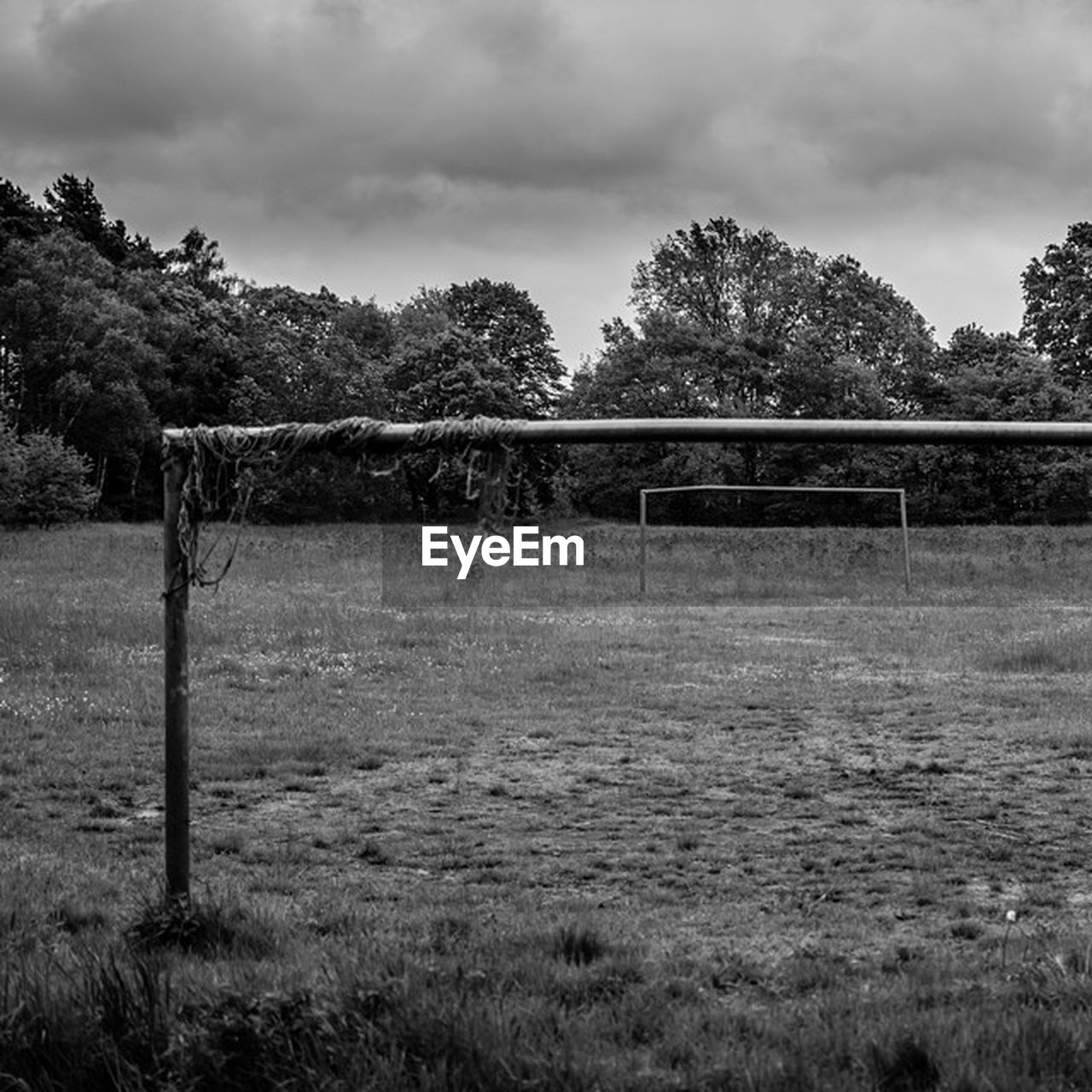 tree, sky, sport, growth, day, nature, grass, no people, goal post, outdoors, soccer, soccer field