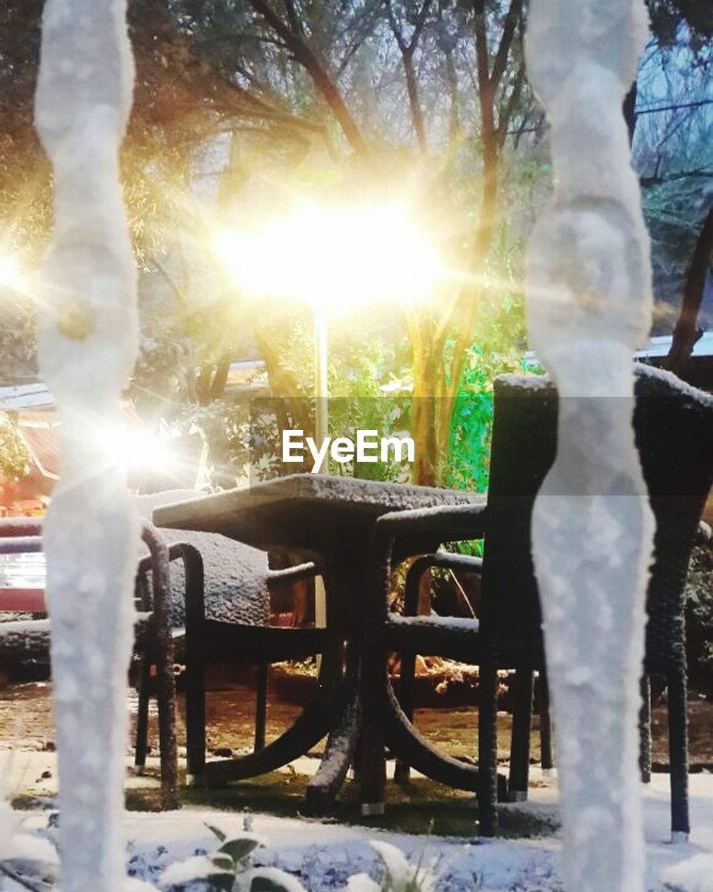 sunbeam, sunlight, chair, tree, outdoors, day, nature, no people, beauty in nature, close-up
