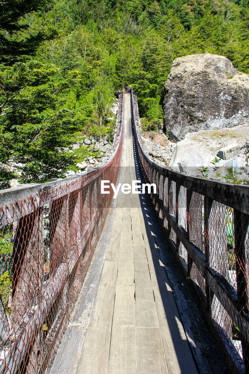 direction, the way forward, tree, plant, built structure, architecture, nature, forest, connection, day, bridge, footbridge, land, rope bridge, no people, bridge - man made structure, railing, transportation, tranquility, tranquil scene, diminishing perspective, outdoors