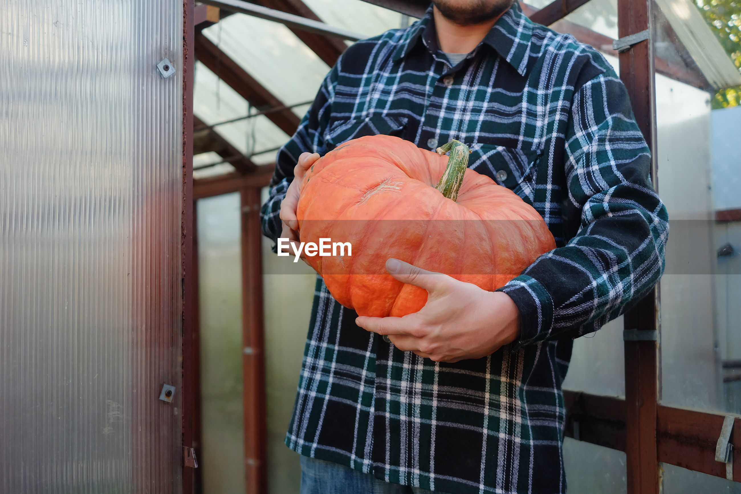MIDSECTION OF MAN HOLDING PUMPKIN WHILE STANDING ON METAL