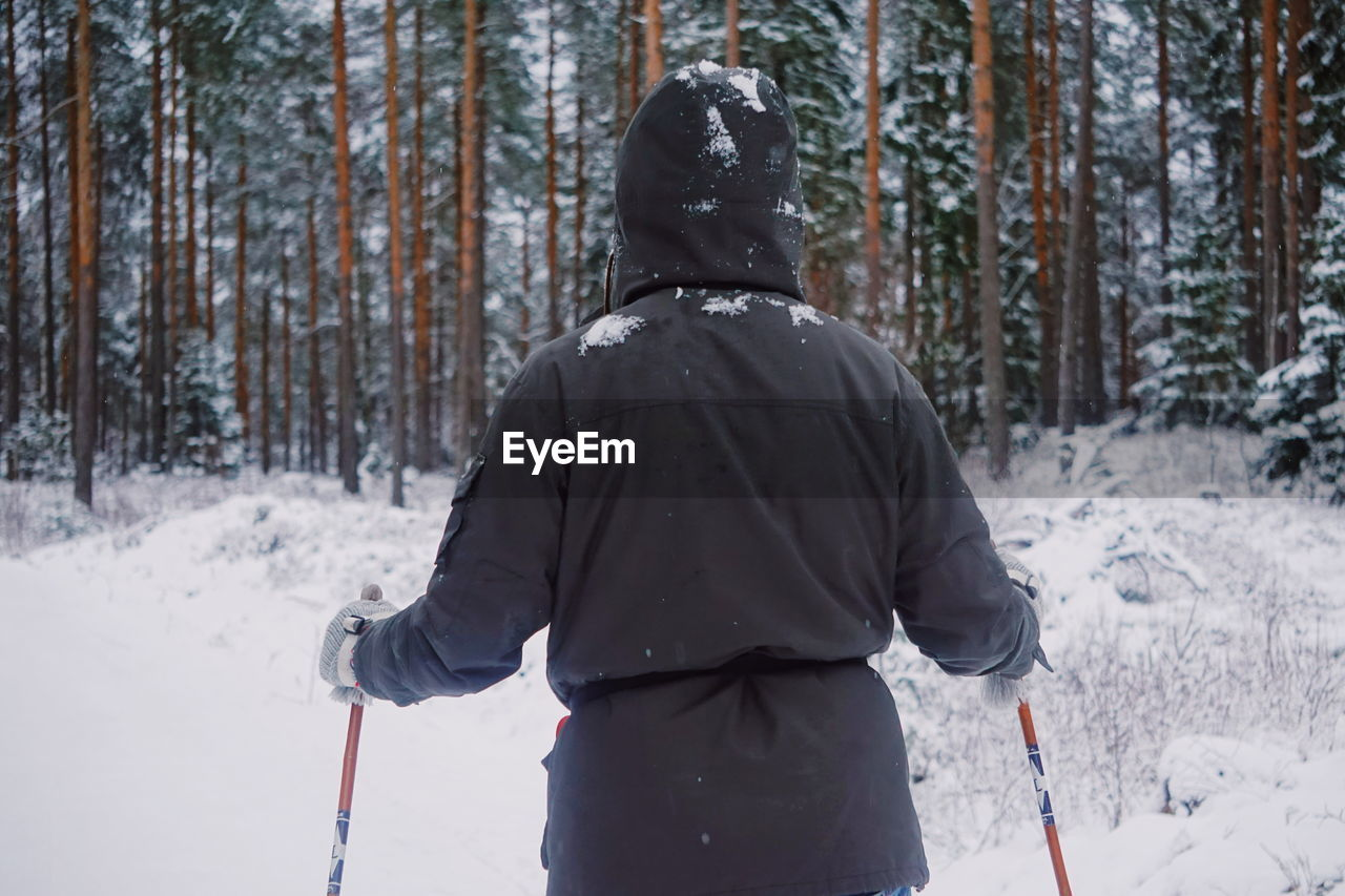 Rear View Of Person Skiing In Snow Covered Forest
