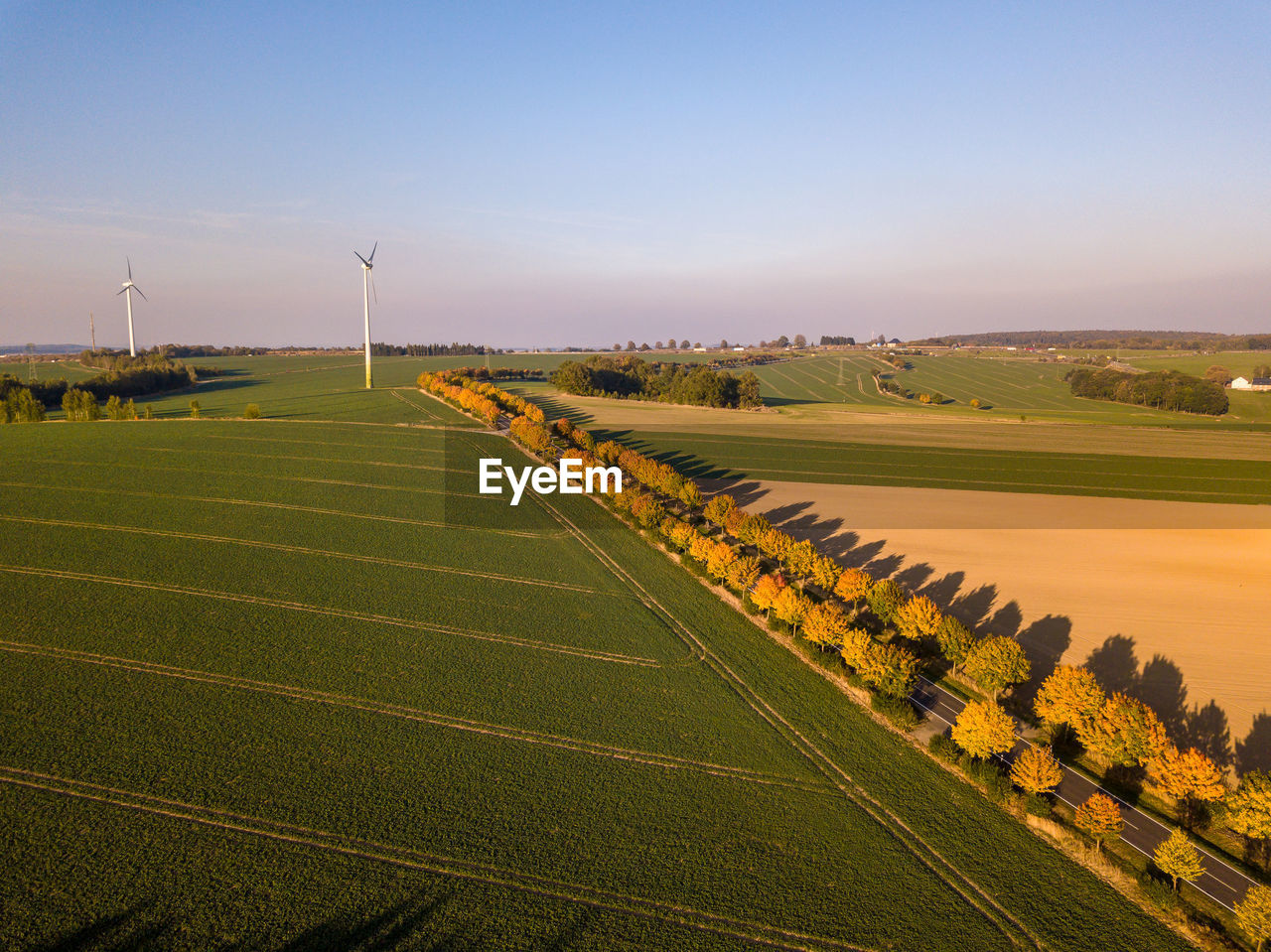 landscape, environment, sky, scenics - nature, field, rural scene, beauty in nature, tranquil scene, land, wind turbine, tranquility, agriculture, turbine, nature, renewable energy, alternative energy, environmental conservation, no people, growth, plant, outdoors, sustainable resources