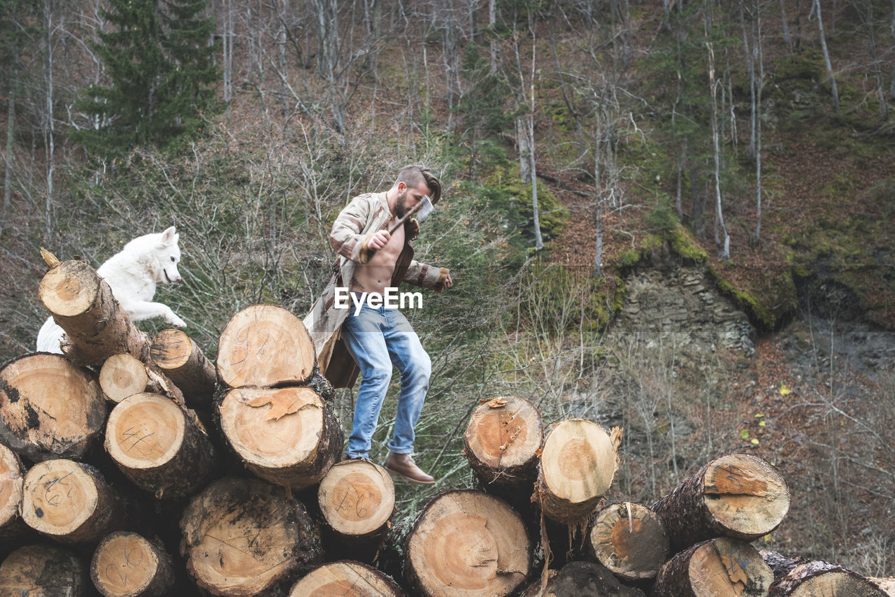Young man with dog on logs of wood in forest