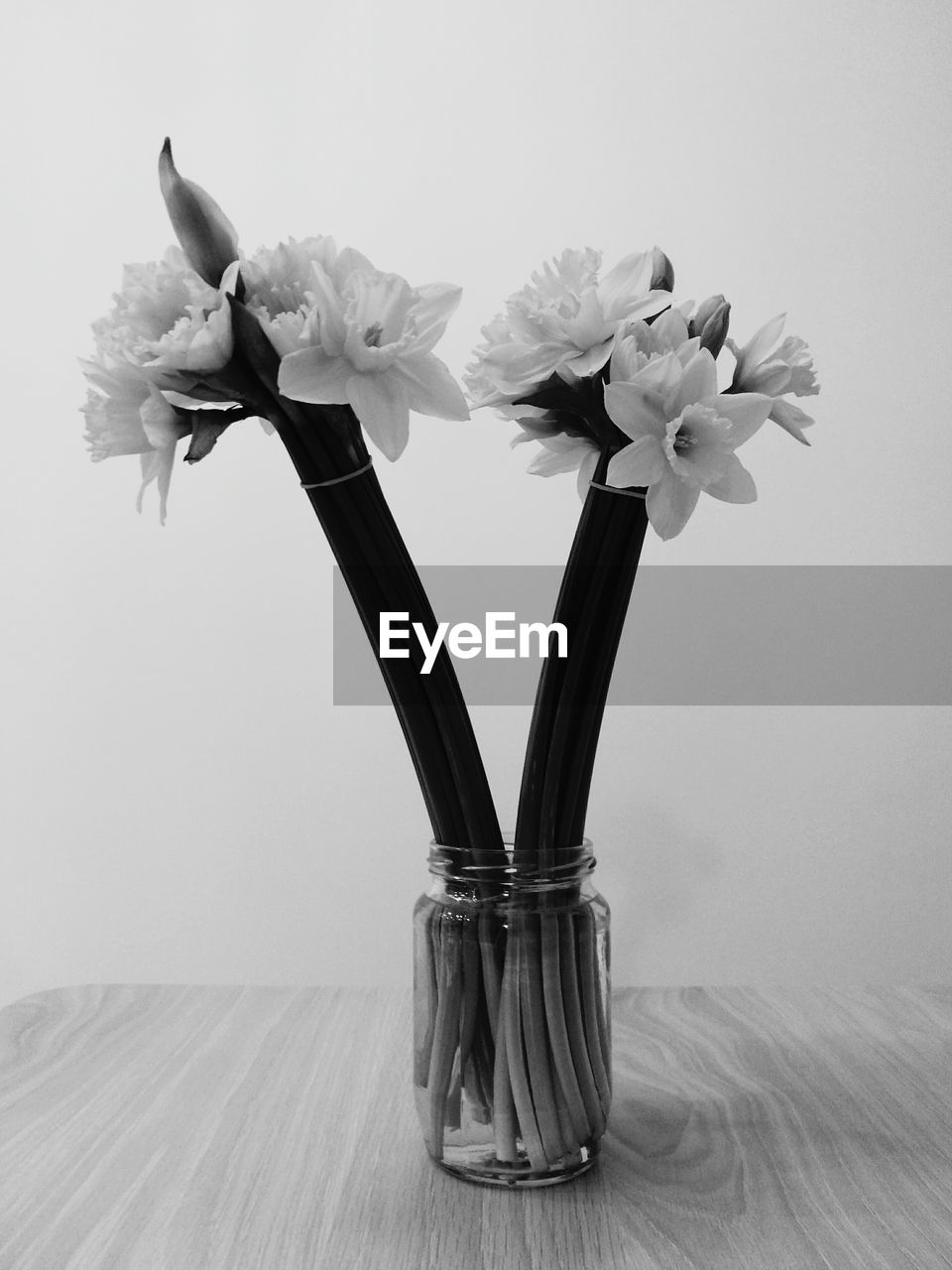 flower, vase, petal, indoors, table, flower head, freshness, no people, fragility, studio shot, bouquet, close-up, nature, beauty in nature, white background, day