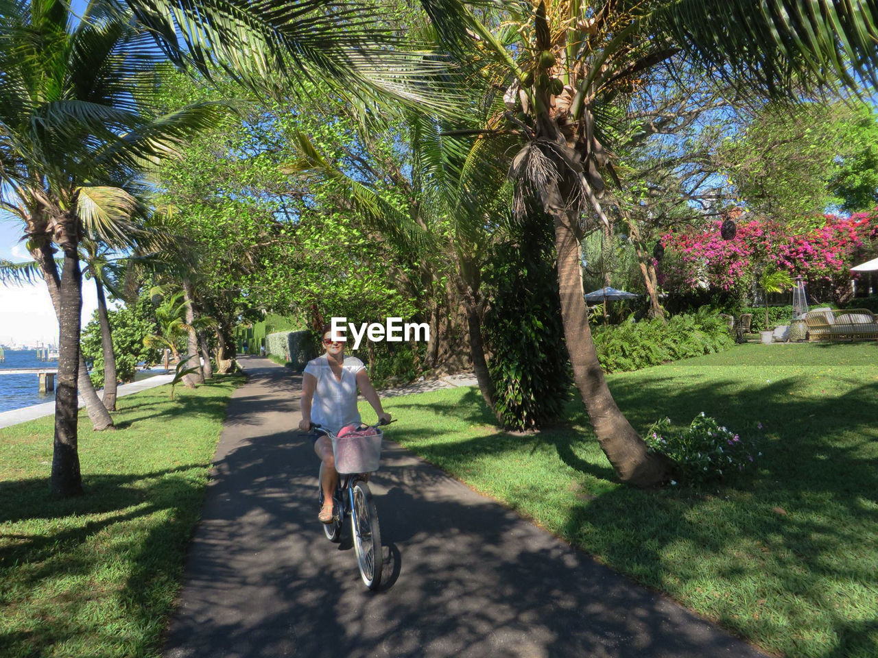 tree, palm tree, full length, bicycle, outdoors, nature, day, tree trunk, one person, vacations, real people, growth, lifestyles, grass, beauty in nature, people, adult
