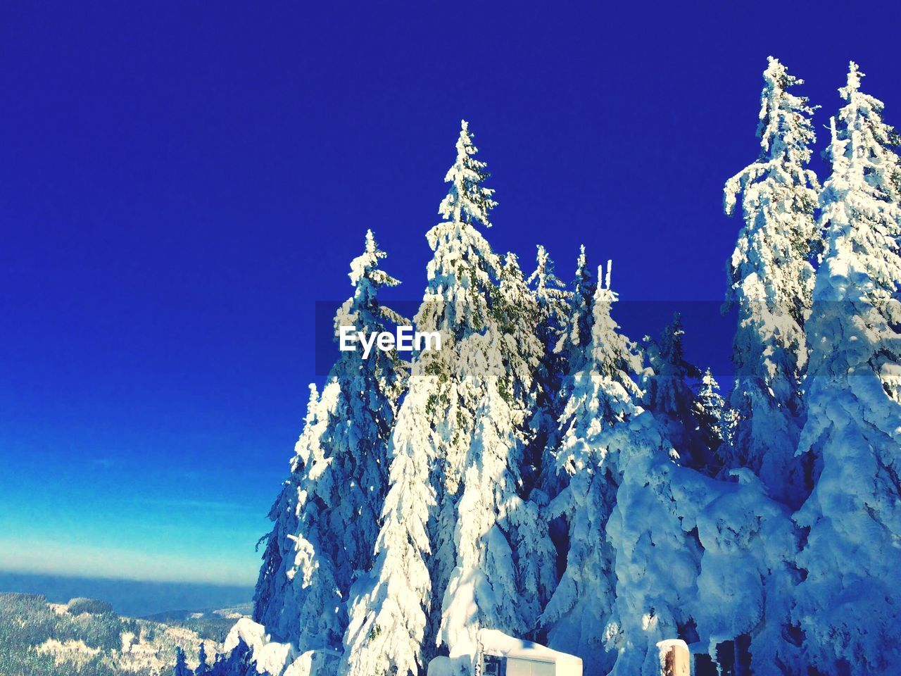 sky, blue, cold temperature, snow, winter, beauty in nature, nature, clear sky, day, tranquility, no people, tranquil scene, low angle view, scenics - nature, sunlight, mountain, copy space, outdoors, frozen, snowcapped mountain, mountain peak