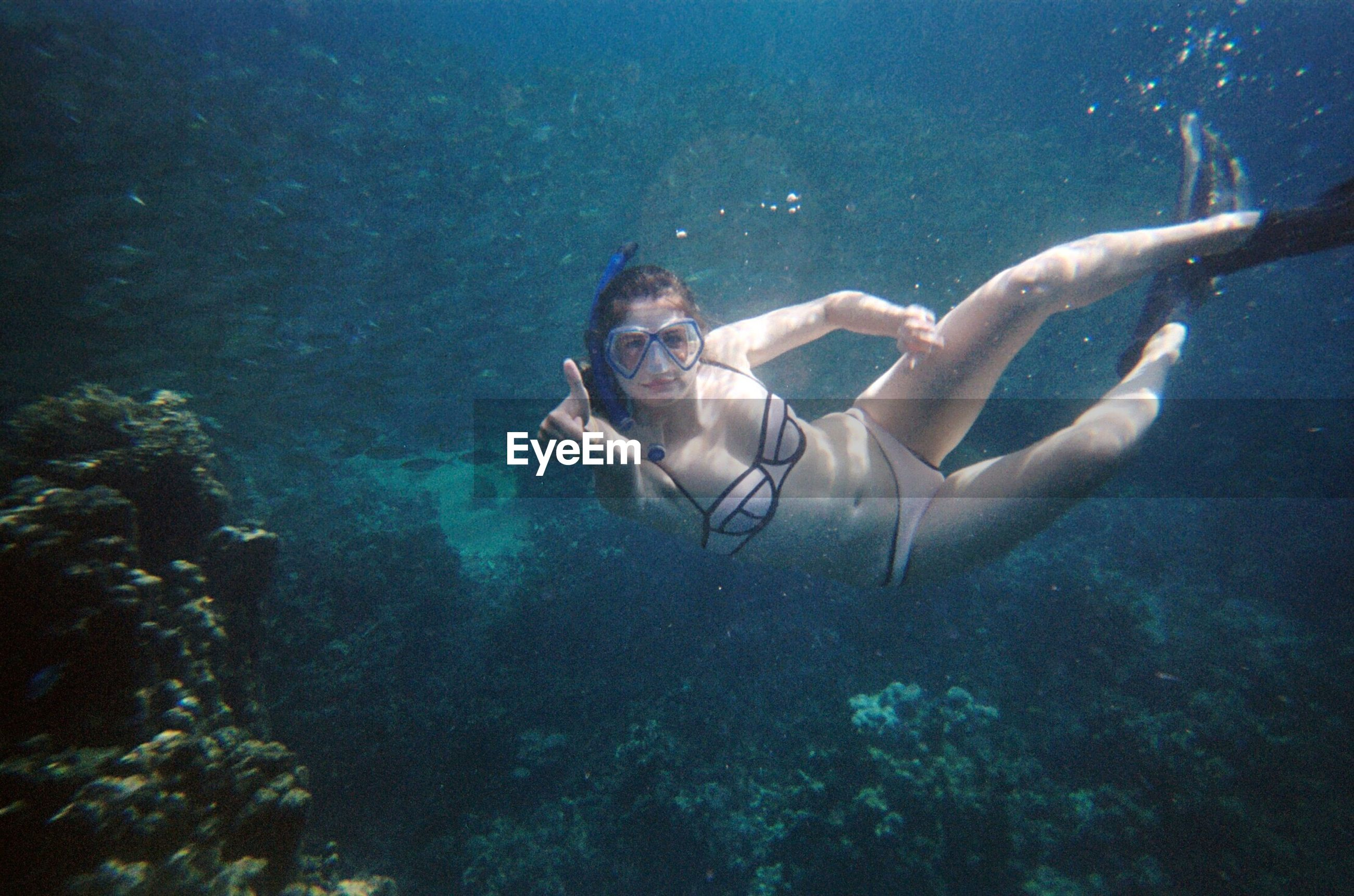 underwater, young adult, undersea, one person, young women, looking at camera, swimming, leisure activity, water, real people, full length, sea, portrait, bikini, lifestyles, vacations, nature, adventure, day, beautiful woman, outdoors, beauty in nature, scuba diving, animal themes, adult, people, adults only