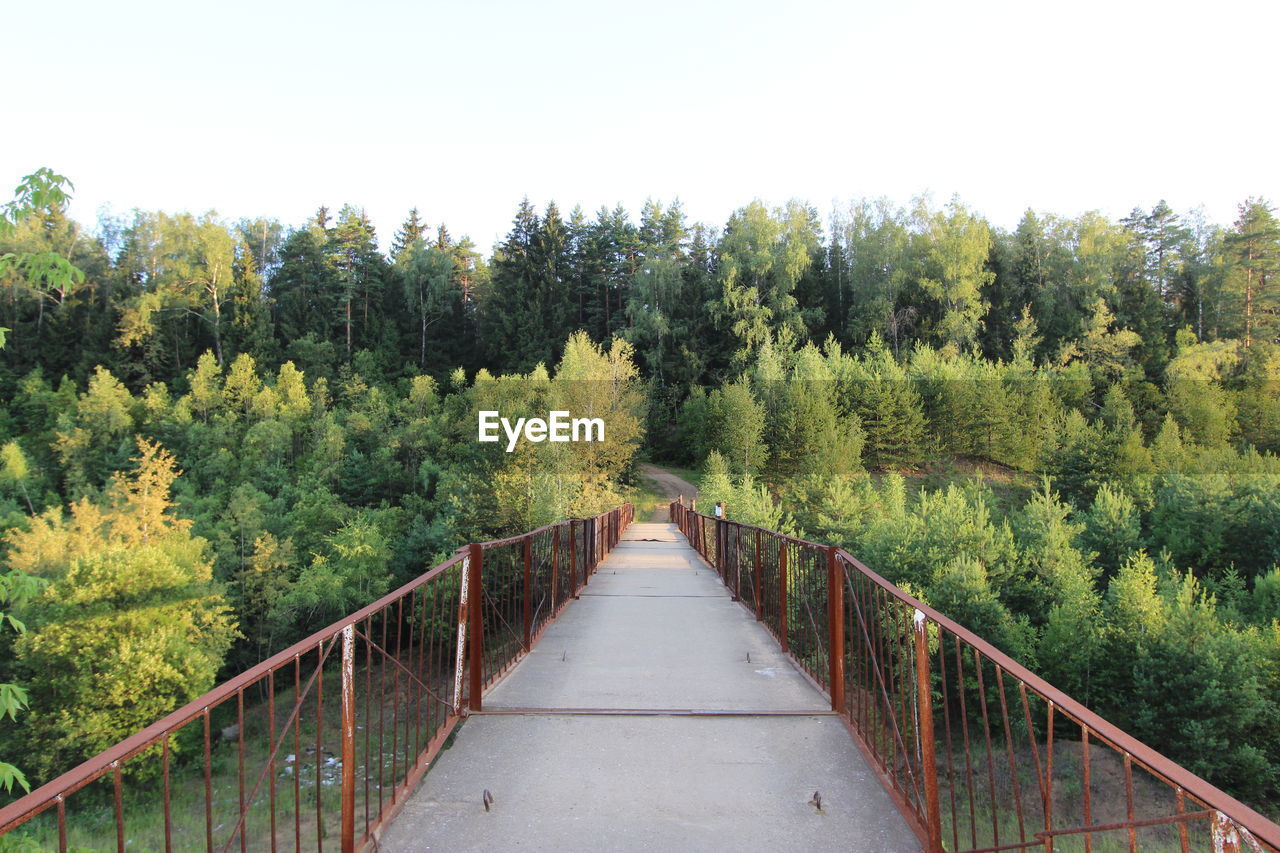 Empty footbridge leading towards forest