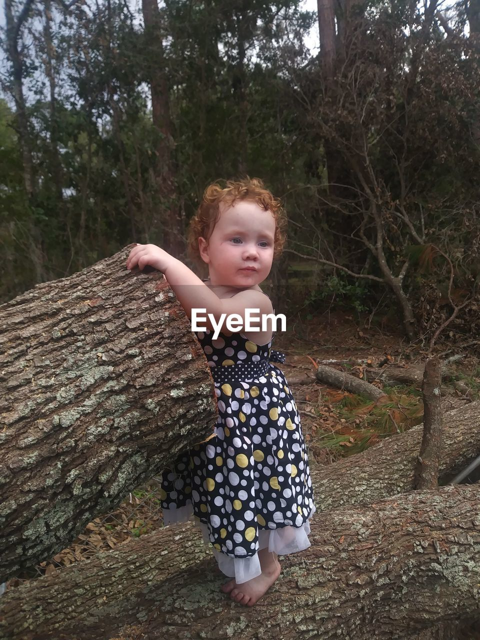 Close-up of girl standing fallen tree in forest