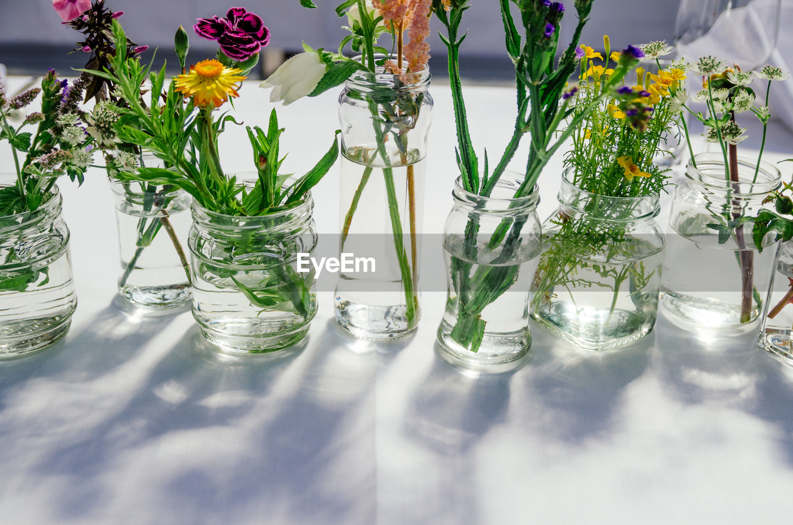 Close-up of flowers in glass on table
