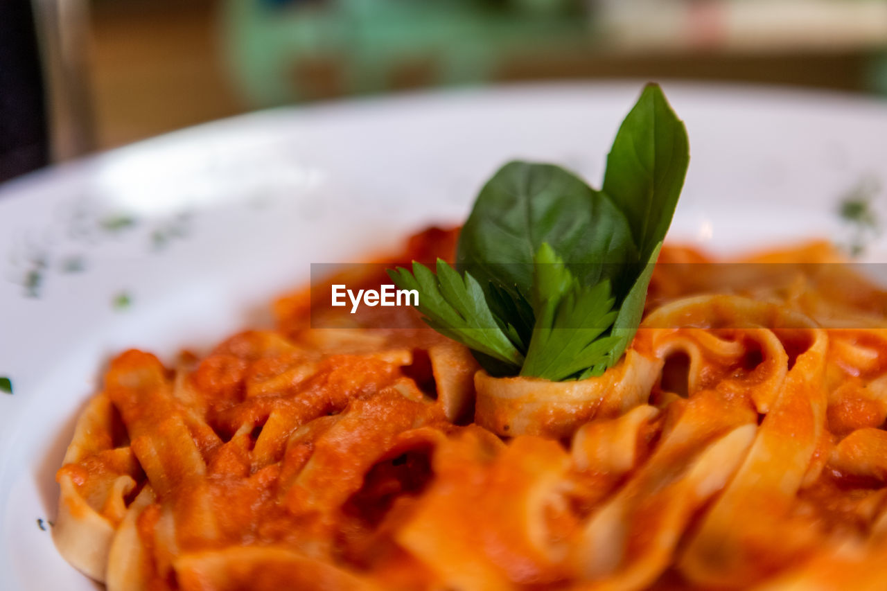 food and drink, food, freshness, ready-to-eat, plate, serving size, italian food, close-up, indoors, still life, selective focus, healthy eating, herb, wellbeing, no people, leaf, pasta, plant part, basil, meal, garnish, crockery, dinner, temptation, snack