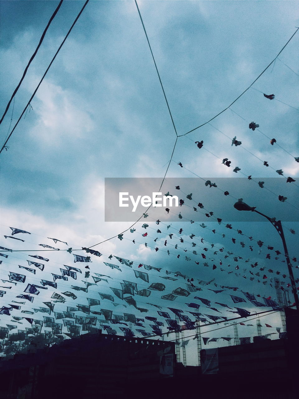 sky, cable, low angle view, power line, cloud - sky, flying, large group of animals, flock of birds, no people, outdoors, mid-air, day, hanging, celebration, built structure, bird, building exterior, architecture, nature, animal themes