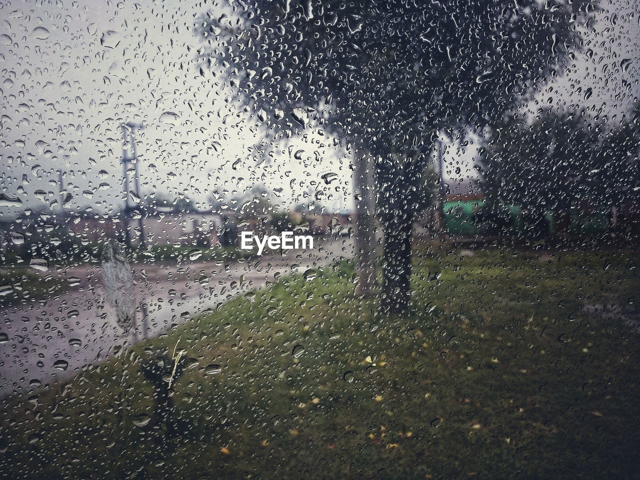 drop, glass - material, wet, water, rain, window, weather, raindrop, car, day, no people, indoors, sky, nature, architecture, city, close-up