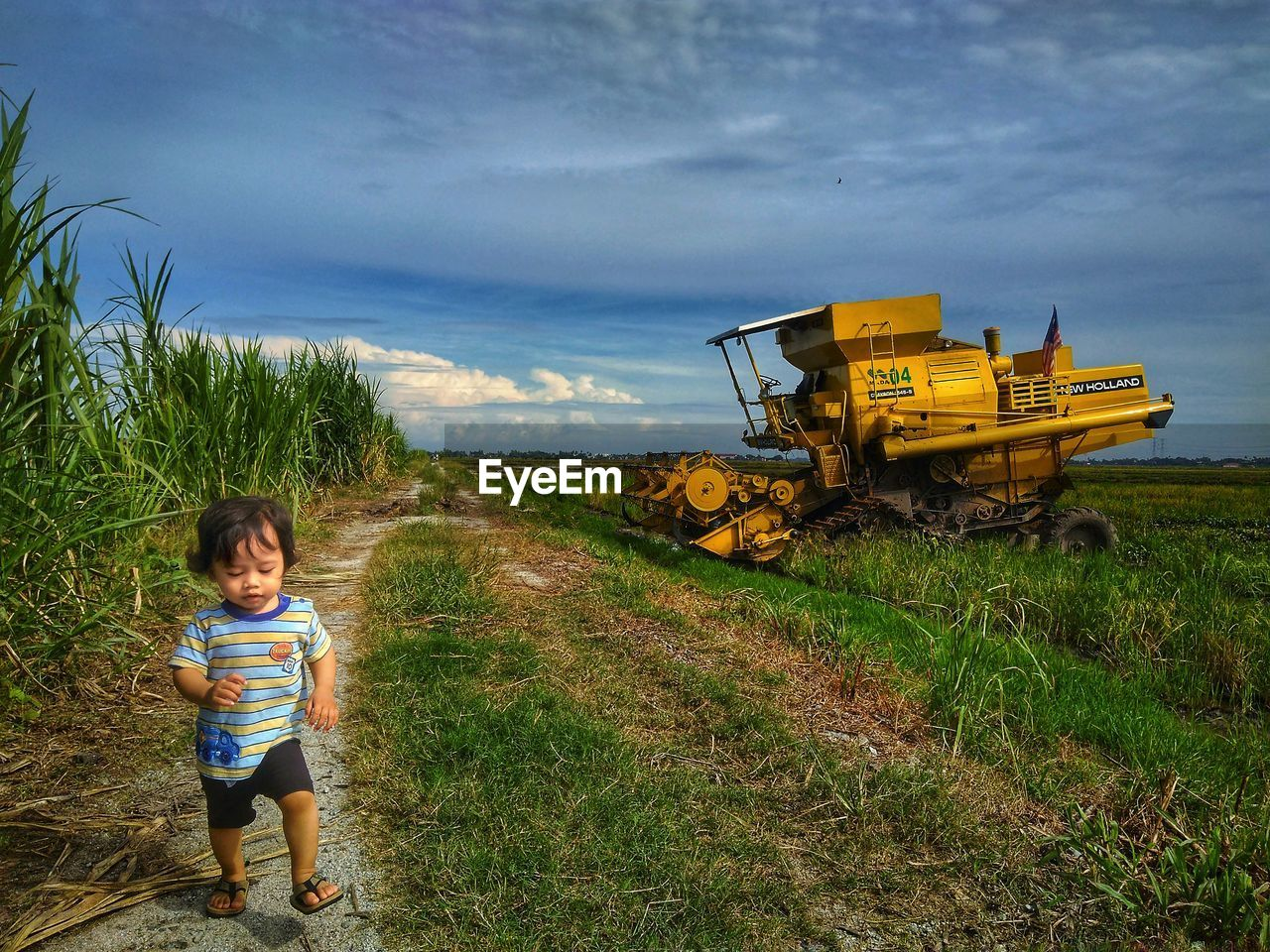 field, real people, grass, one person, sky, agriculture, growth, nature, landscape, cloud - sky, outdoors, childhood, girls, rural scene, full length, day, people