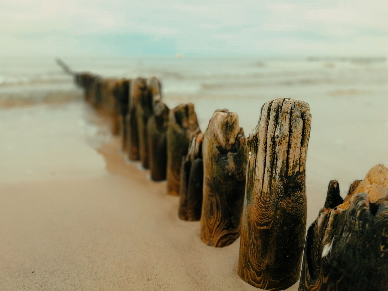 sea, land, beach, sand, water, nature, horizon over water, sky, no people, focus on foreground, horizon, beauty in nature, day, close-up, tranquility, scenics - nature, tranquil scene, in a row, outdoors, wooden post
