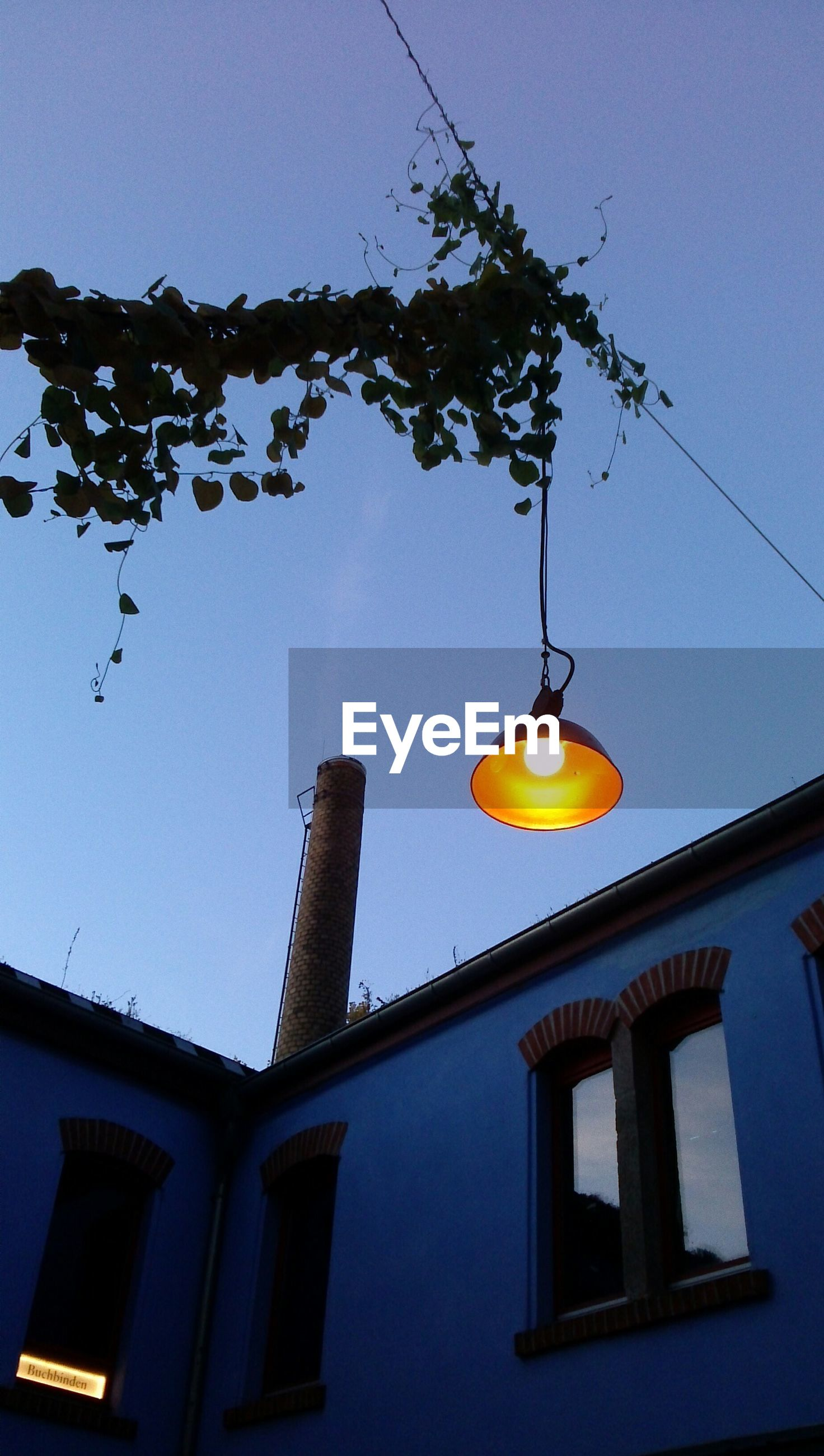 low angle view, architecture, building exterior, built structure, lighting equipment, clear sky, street light, hanging, illuminated, sky, lantern, branch, high section, building, window, tree, residential building, electricity, city, house