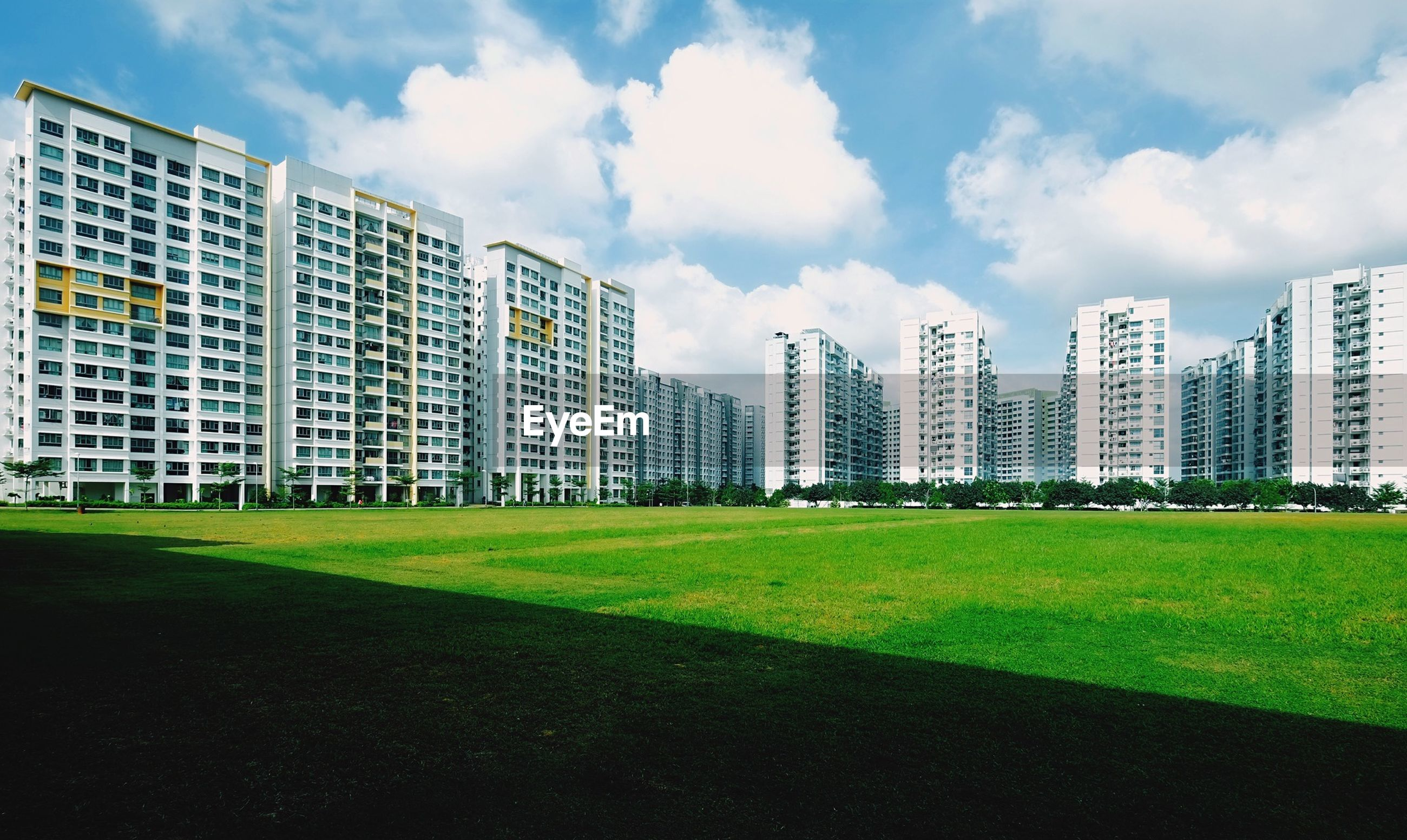 building exterior, grass, architecture, built structure, sky, city, cloud - sky, lawn, green color, cloud, modern, office building, skyscraper, building, cloudy, day, grassy, outdoors, tree, residential building