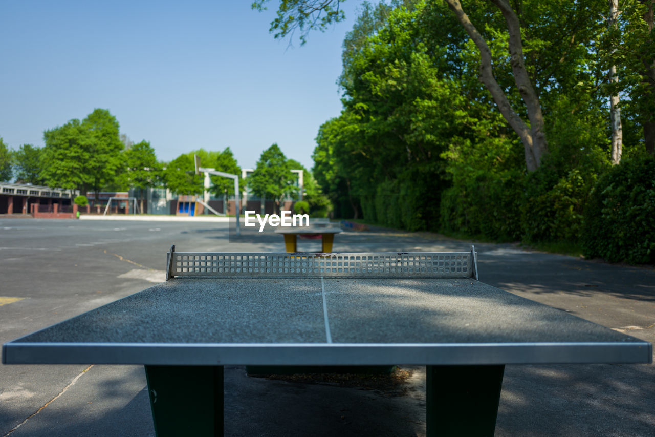 tree, plant, nature, table, day, sport, table tennis, sky, no people, green color, seat, outdoors, absence, sunlight, growth, leisure activity, front or back yard, park, blue, empty, swimming pool