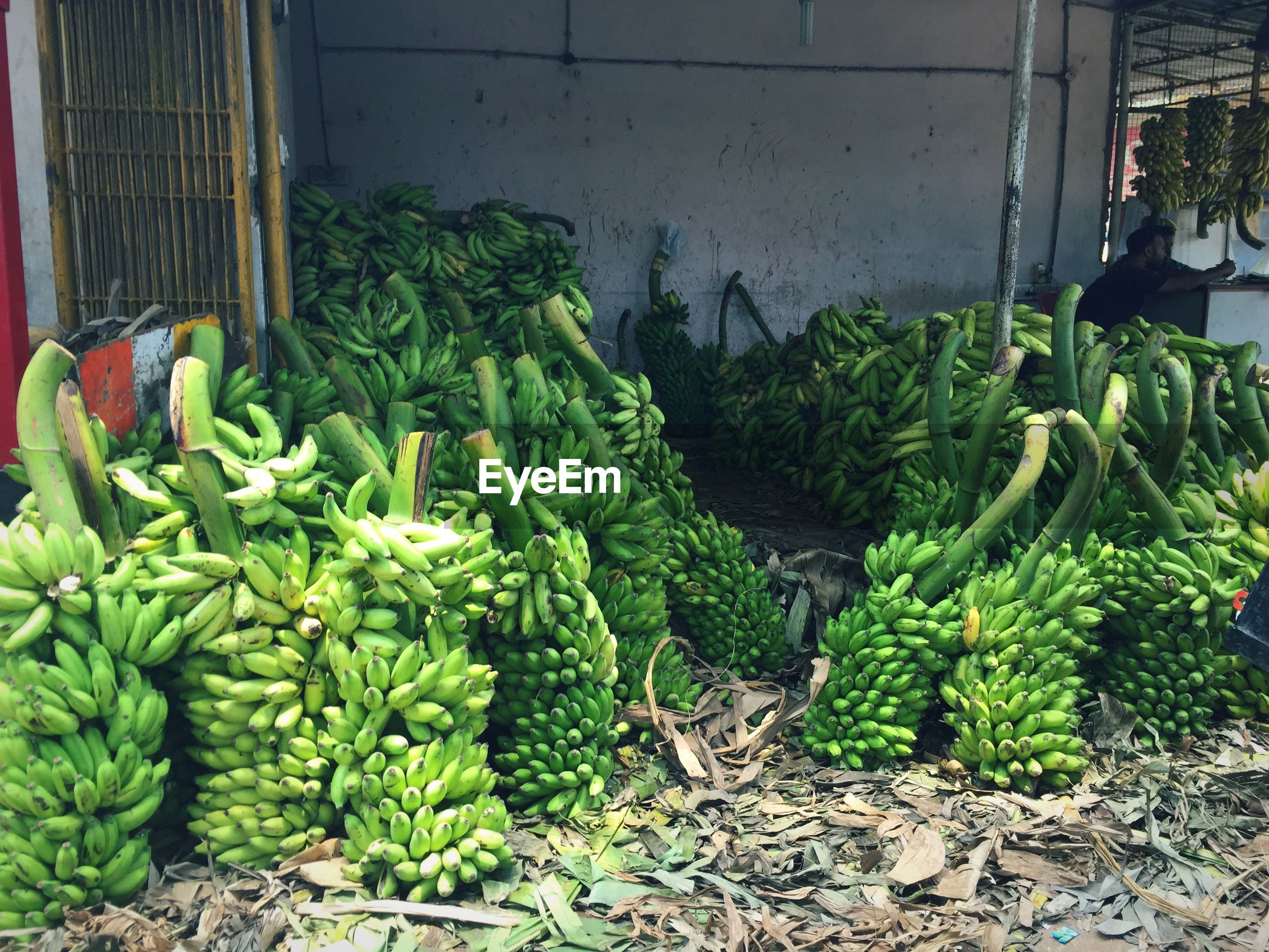 Raw bananas for sale in market