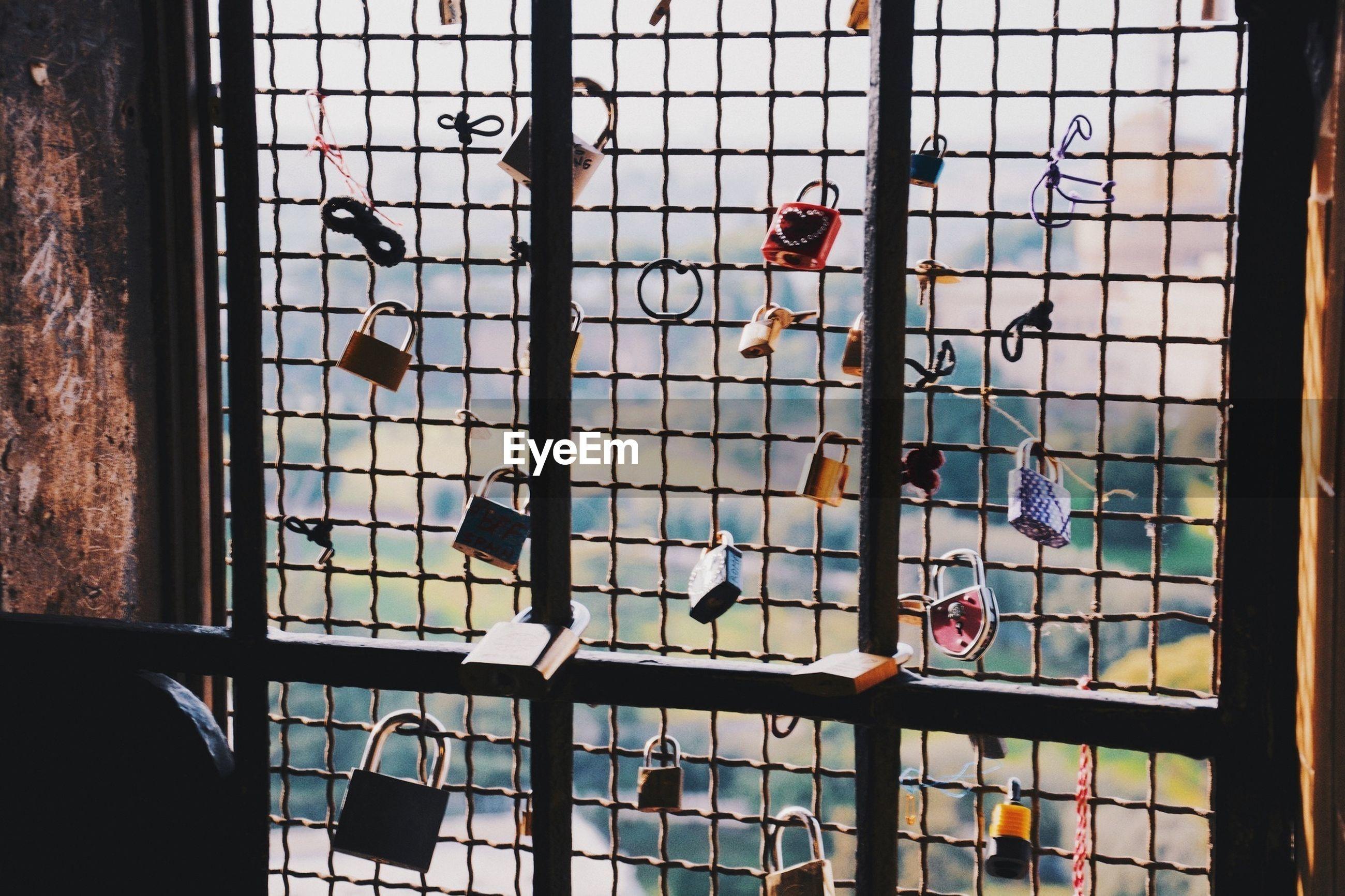 Love padlocks hanging on window fence
